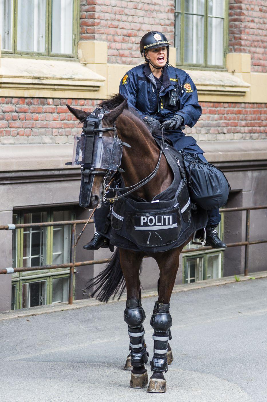 Mounted Police at Akershus Festning, Oslo, Norway