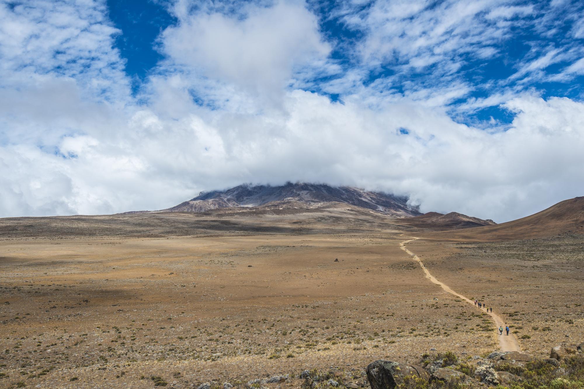 Kilimanjaro Panorama, Tanzania