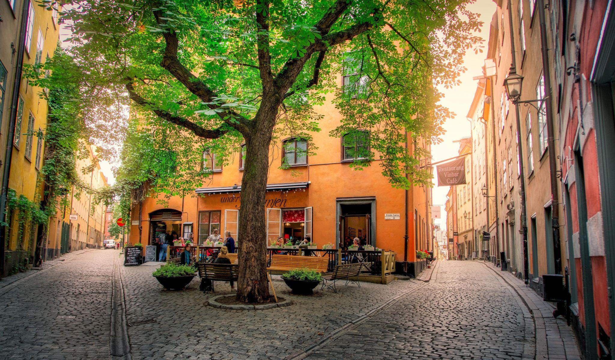 Vinbar Cafe Gamla Stan Stockholm Sweden, Sweden