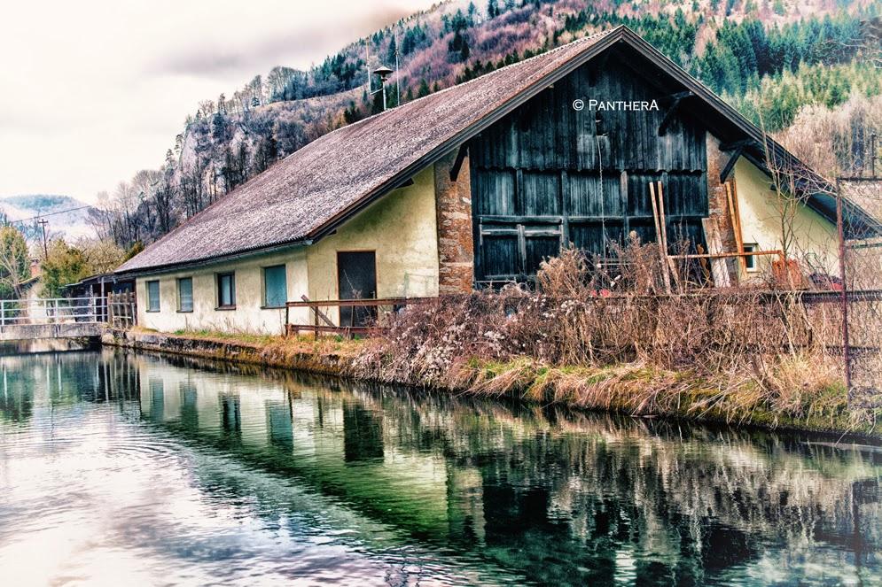 Freiland, Austria