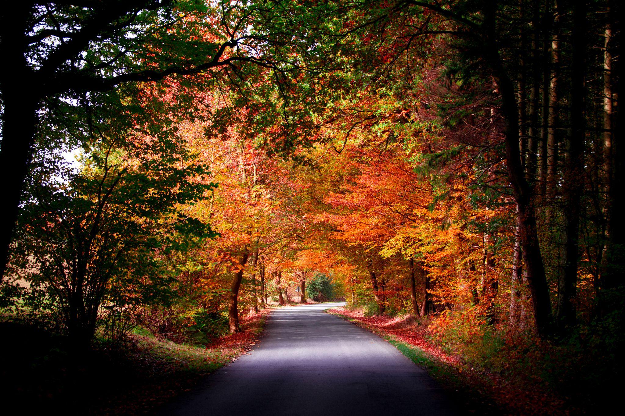 Haarweg - Soester Börde, Germany