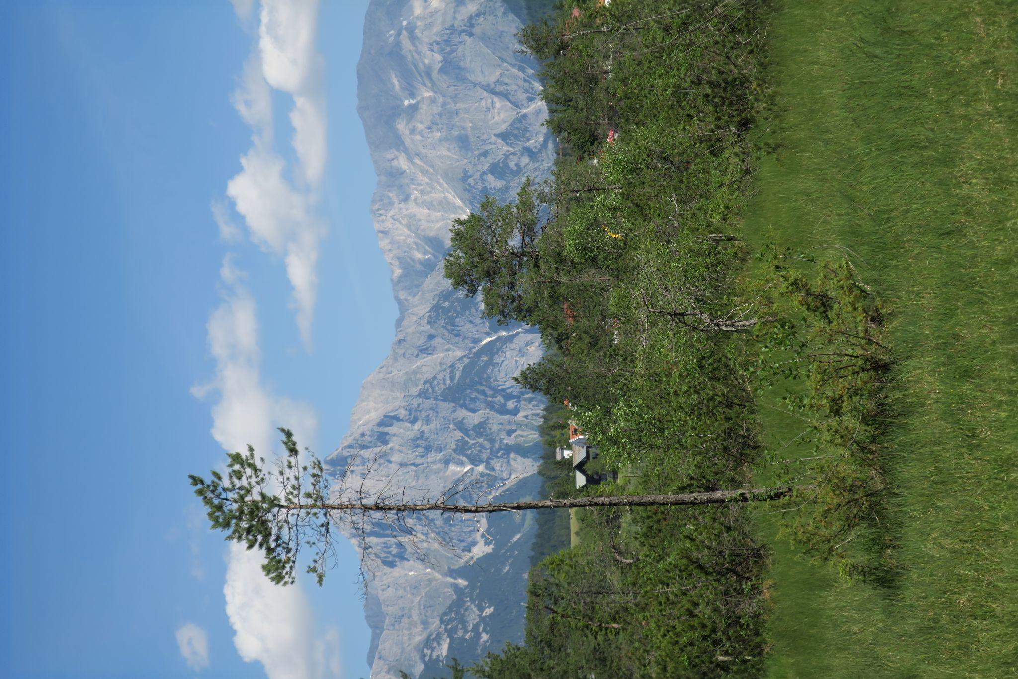 kühle Schönheit, Austria