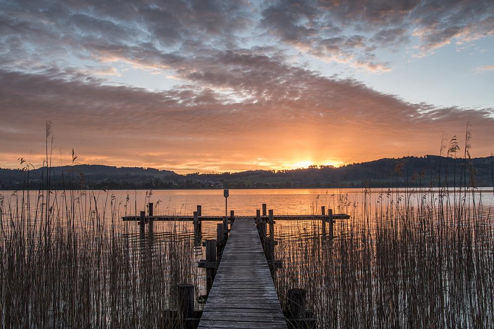 Pfäffikersee Sonnenaufgang, Switzerland