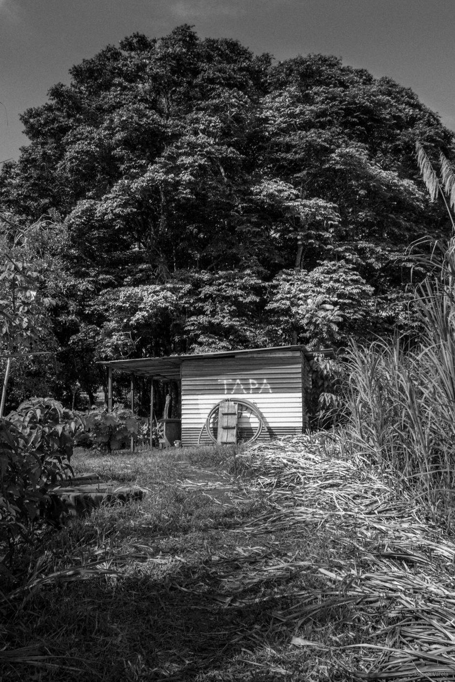 San Carlos, Costa Rica