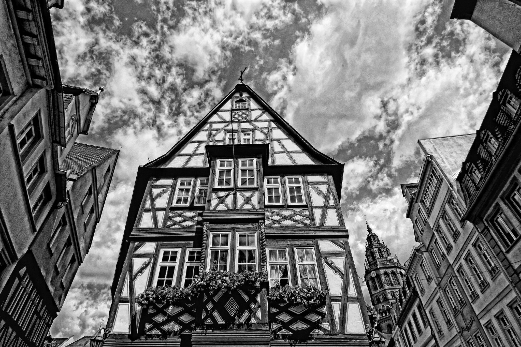 Im Kirschgarten in Mainz (Rhineland-Palatinate), Germany