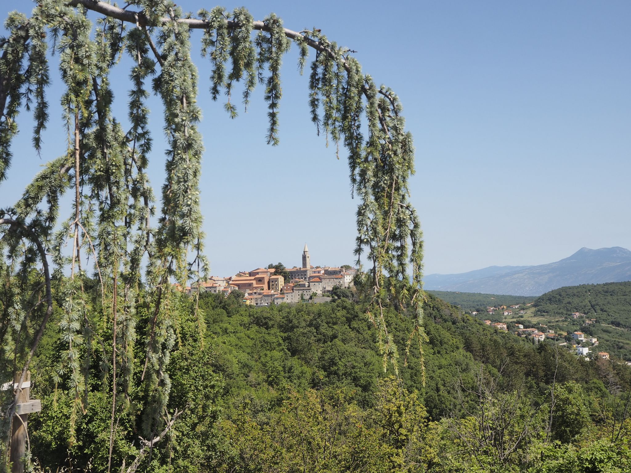 Old town of Labin from cemetry, Croatia