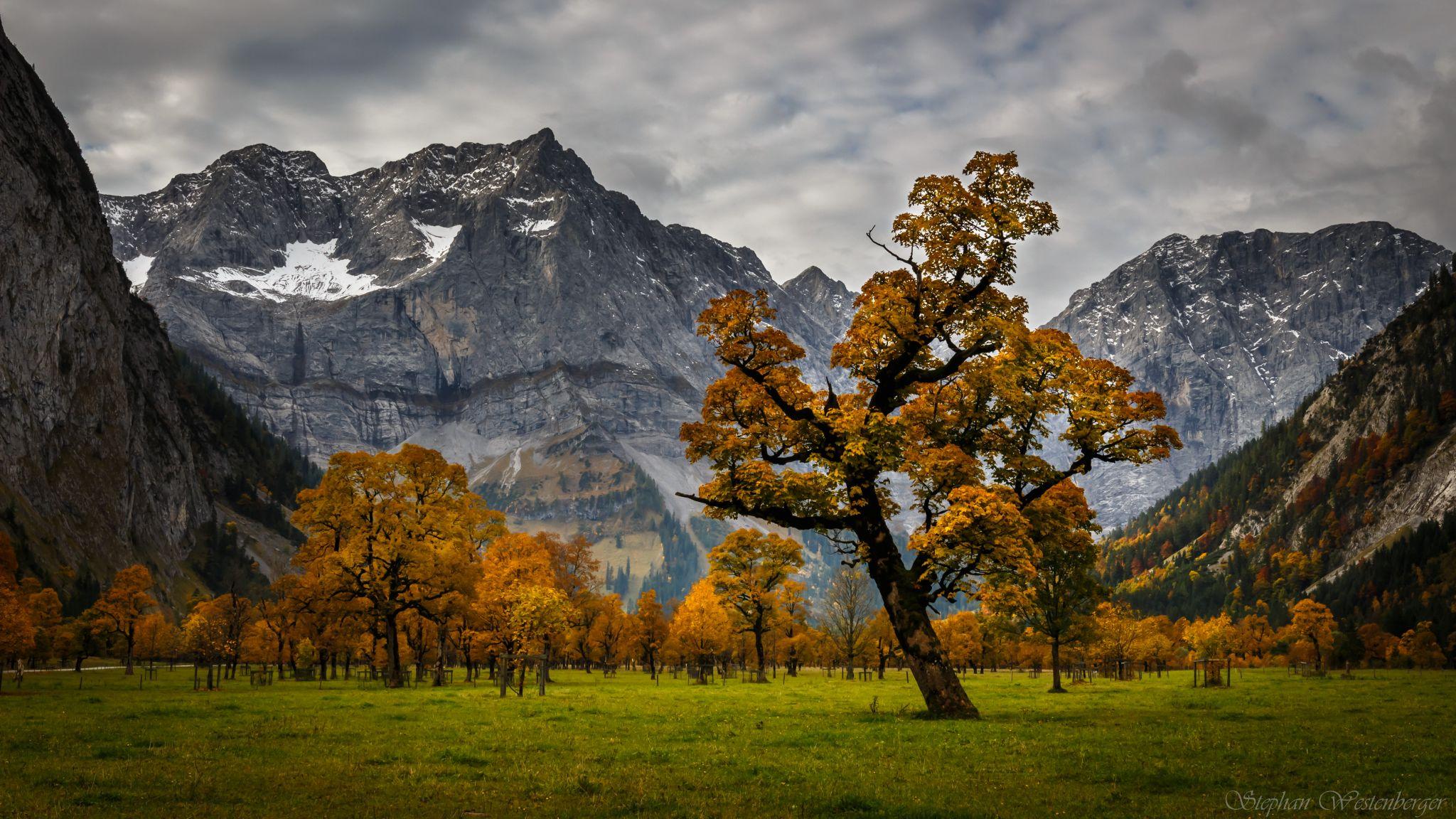 Ahornboden Nature Reserve, Austria