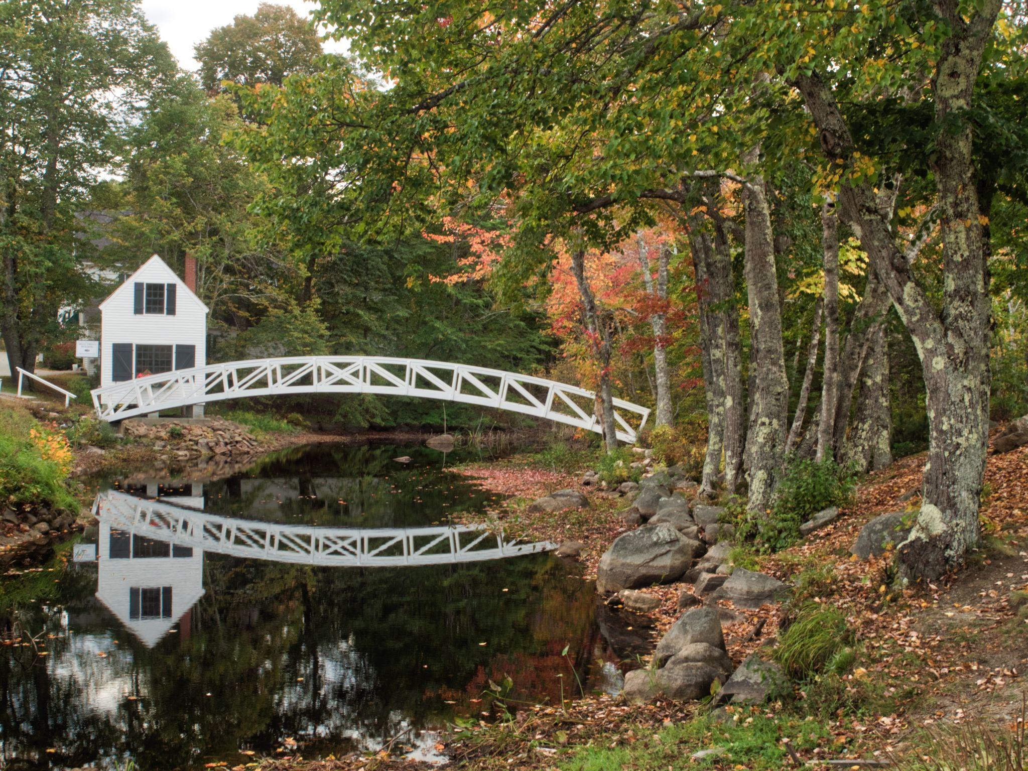 Bridge at Somesville Library, USA