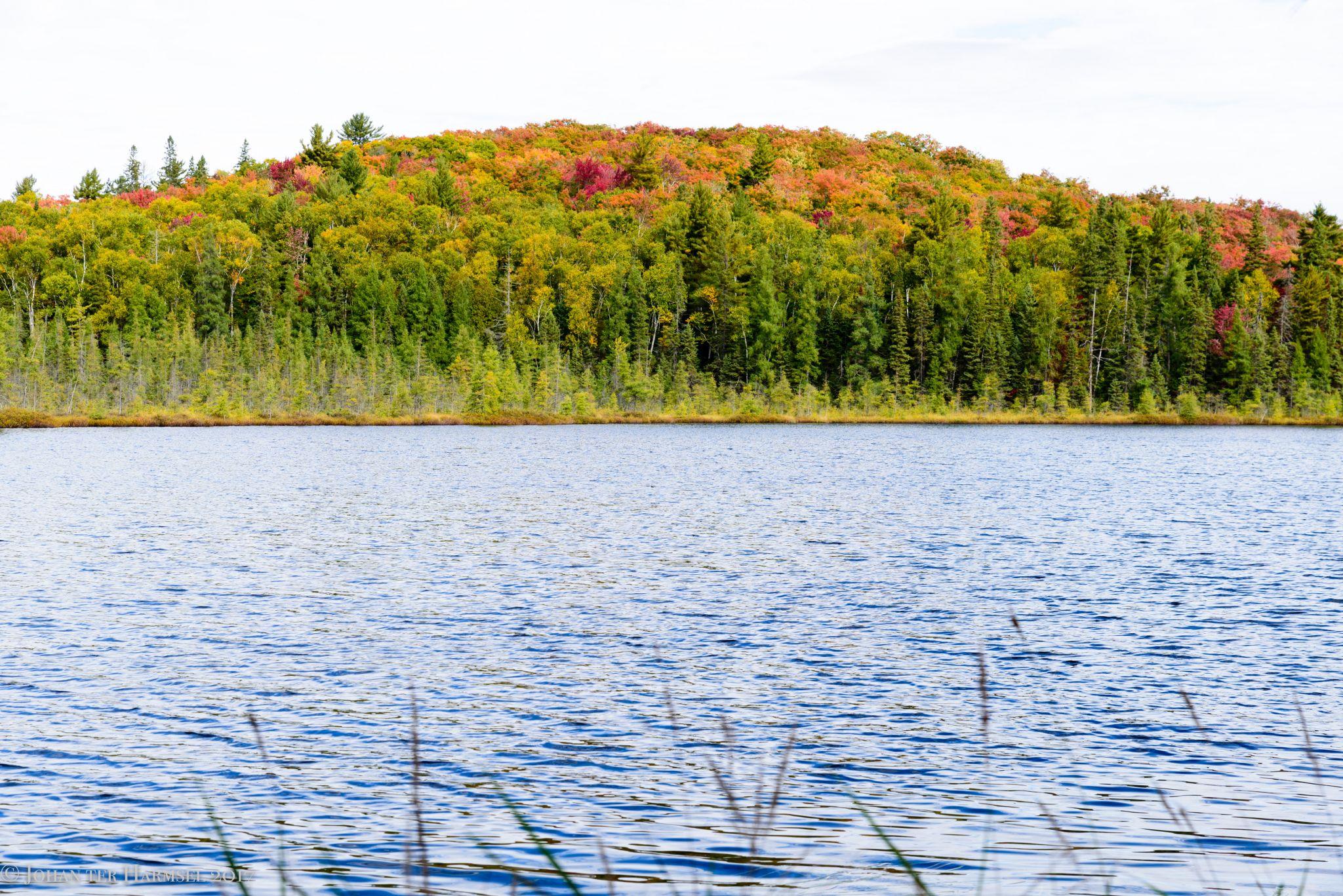 Dizzy Lake, Algonquin, Canada