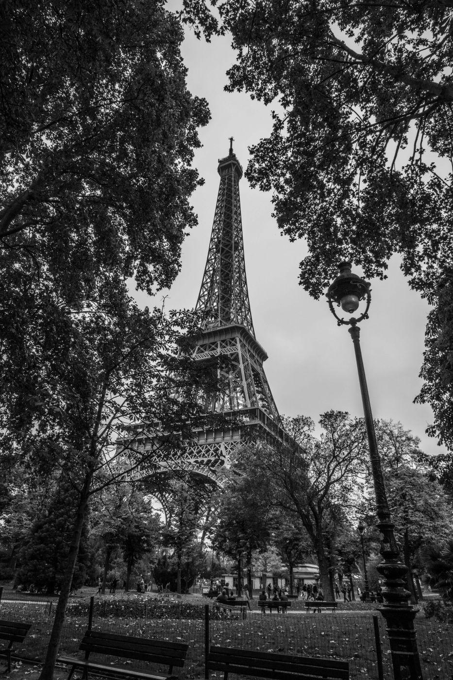 Framed Eiffel Tower, France