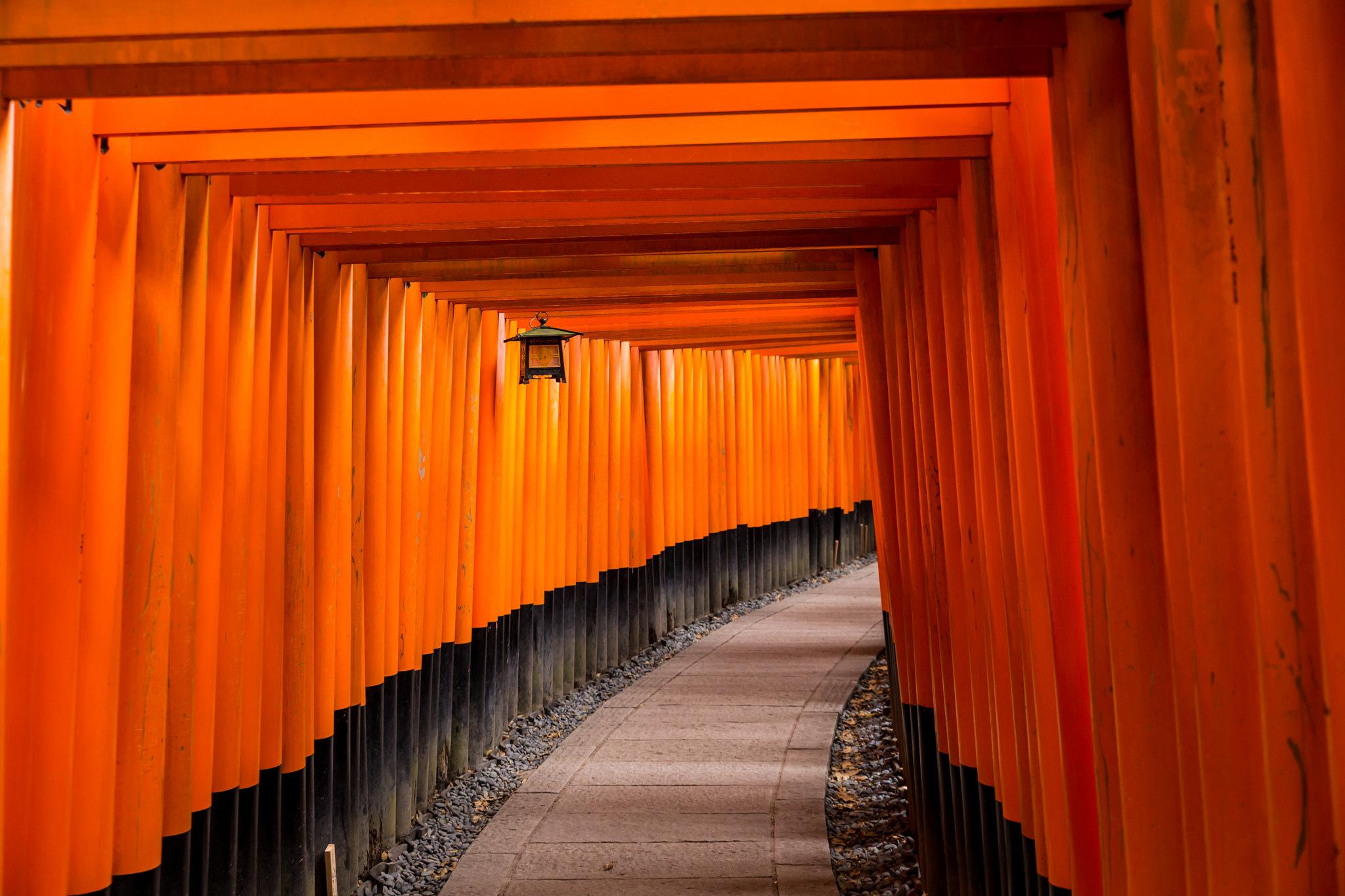 Fushimi Inari Shrine Kyoto, Japan