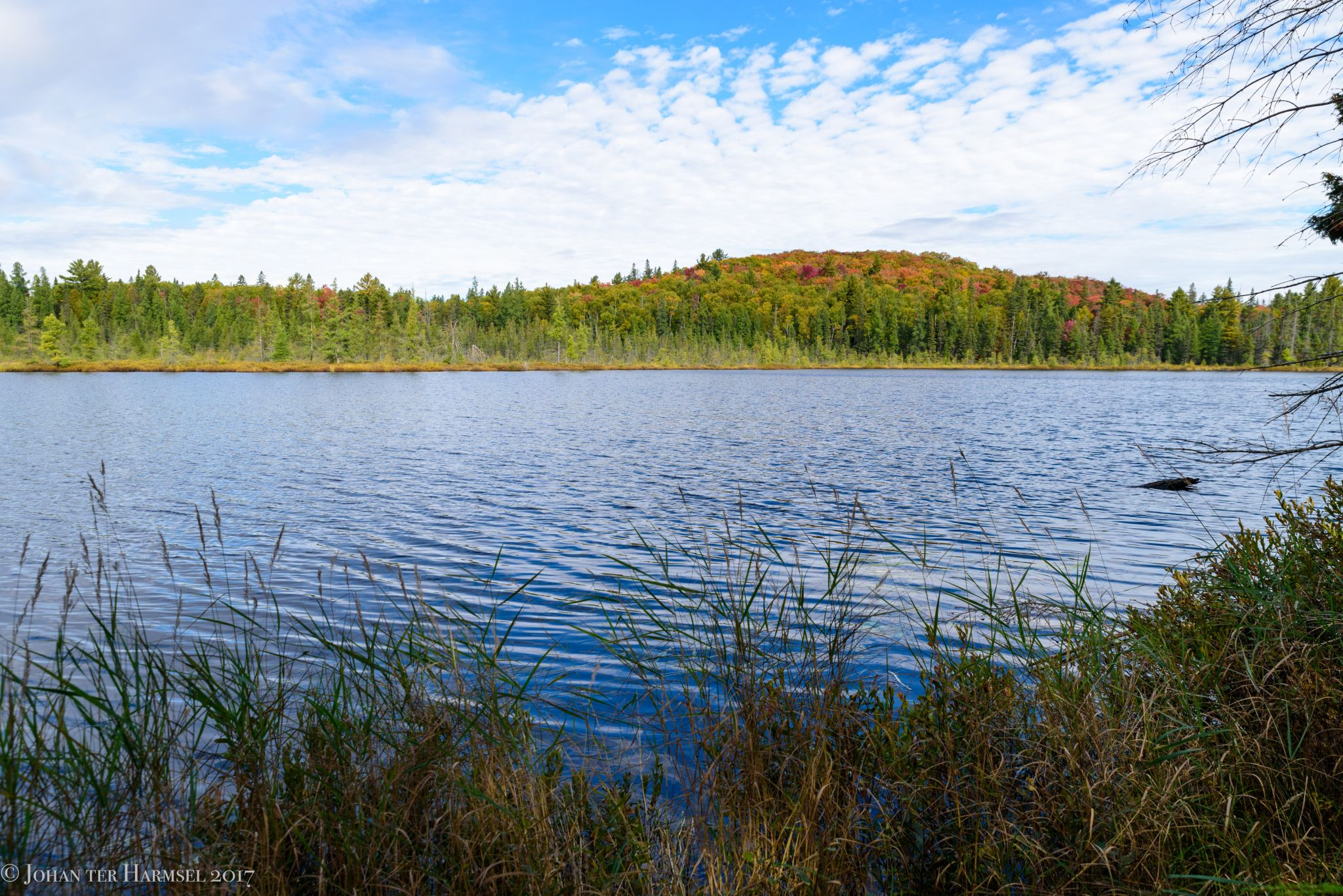 Mizzy Lake. Algonquin, Canada