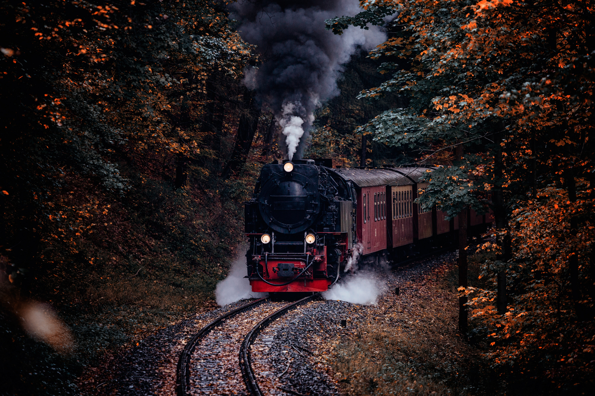 Die Harzer Schmalspurbahn im Thumkuhlental, Germany