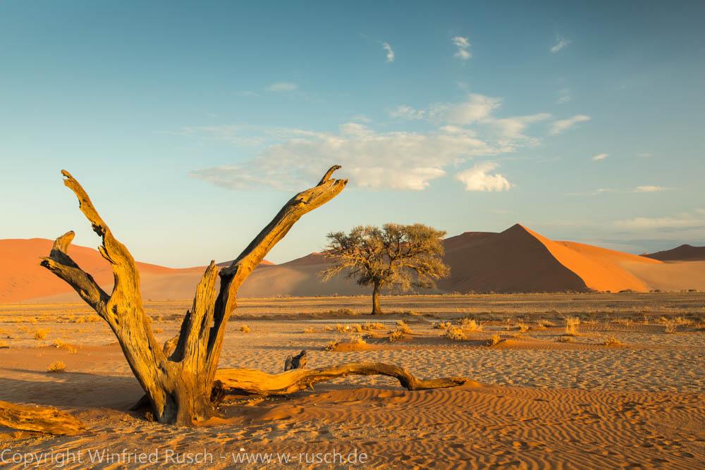 Düne 45, Namibia