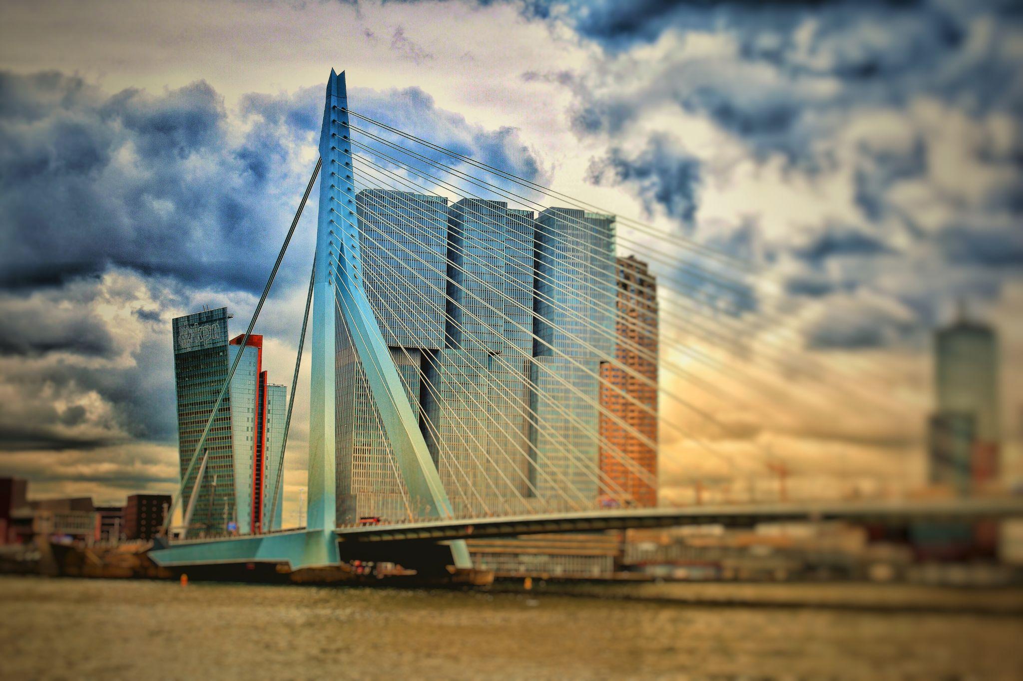 Erasmus Bridge, Netherlands