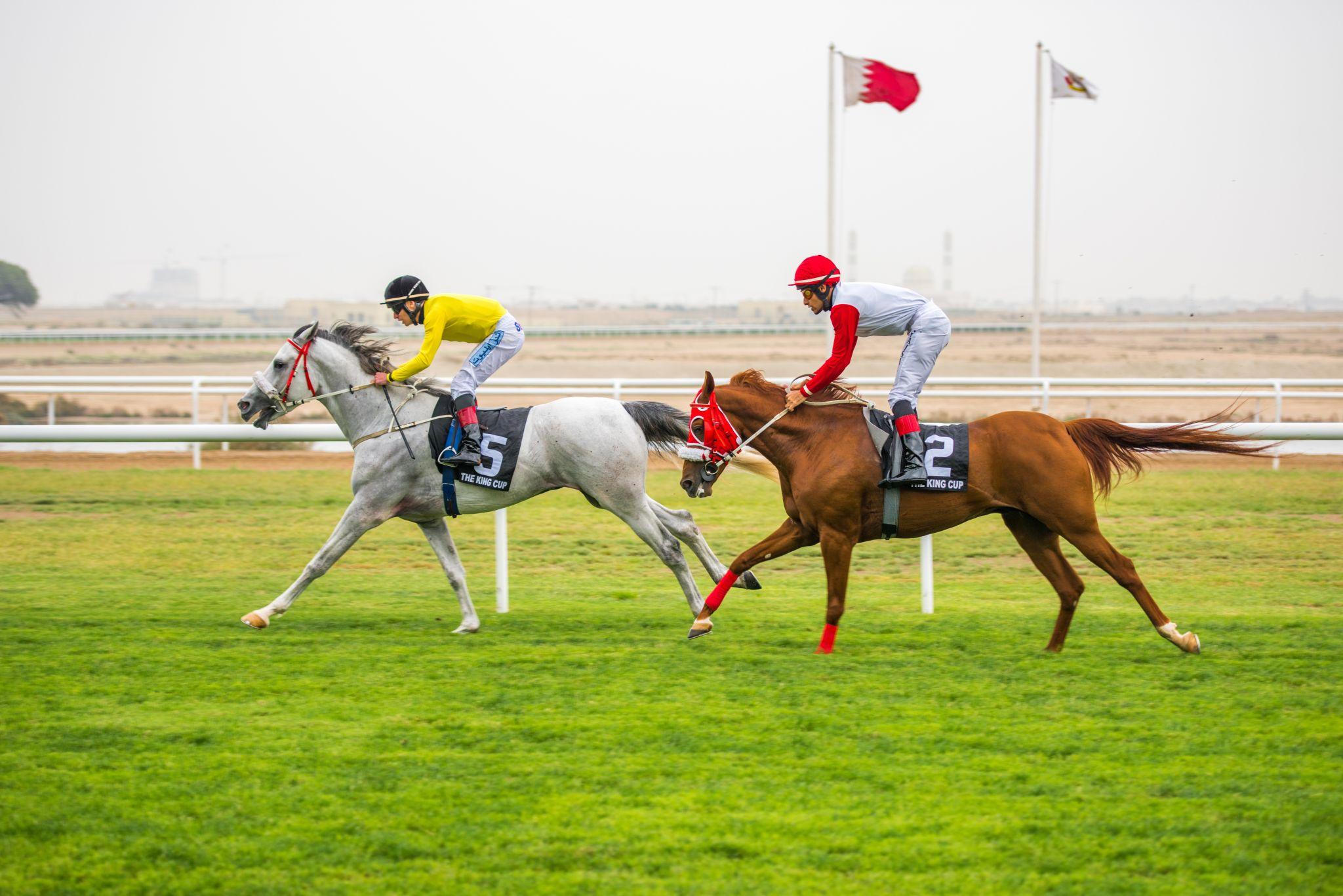 Horse Racing Complex, Bahrain
