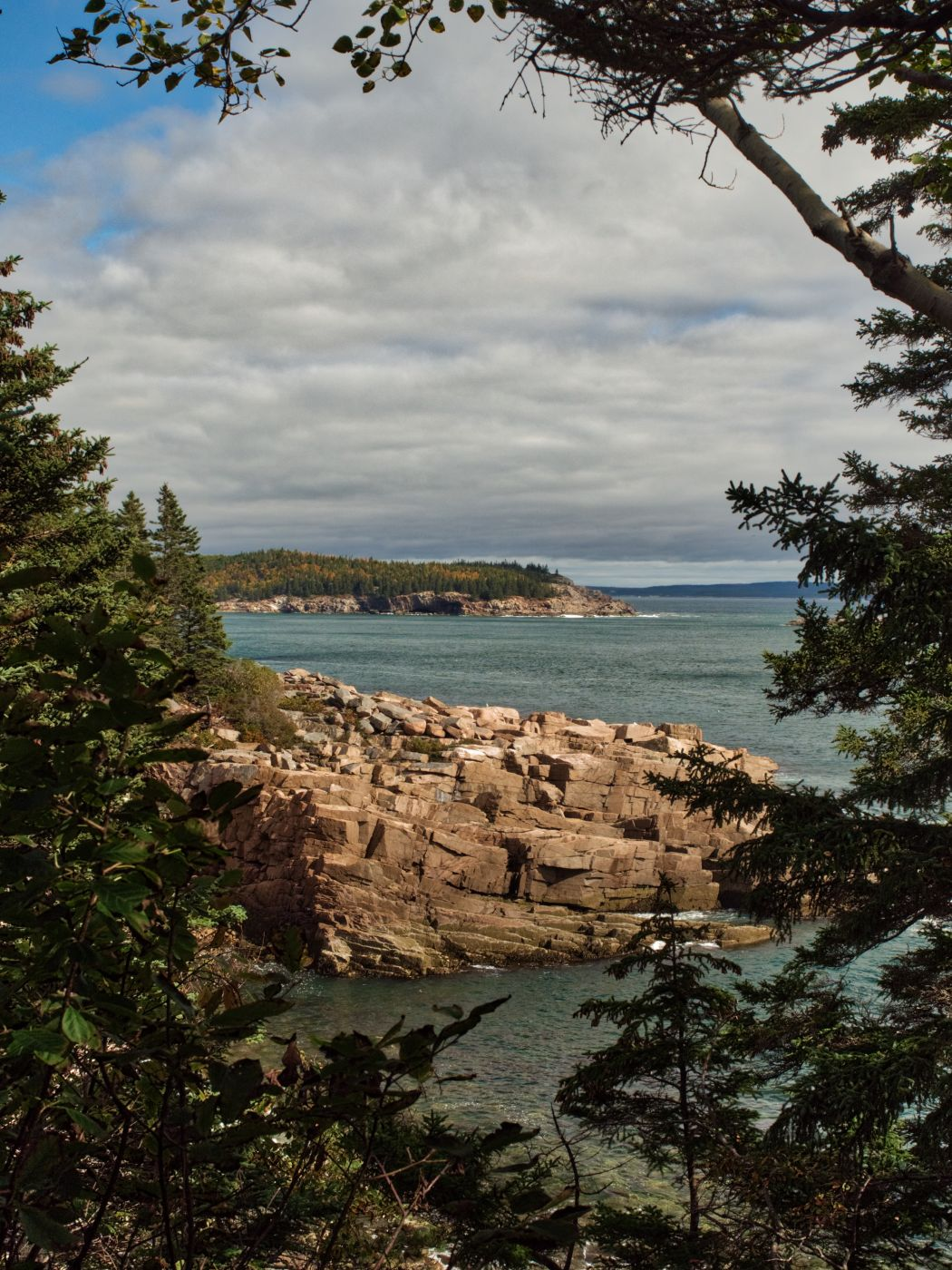 Newport Cove, Maine, USA