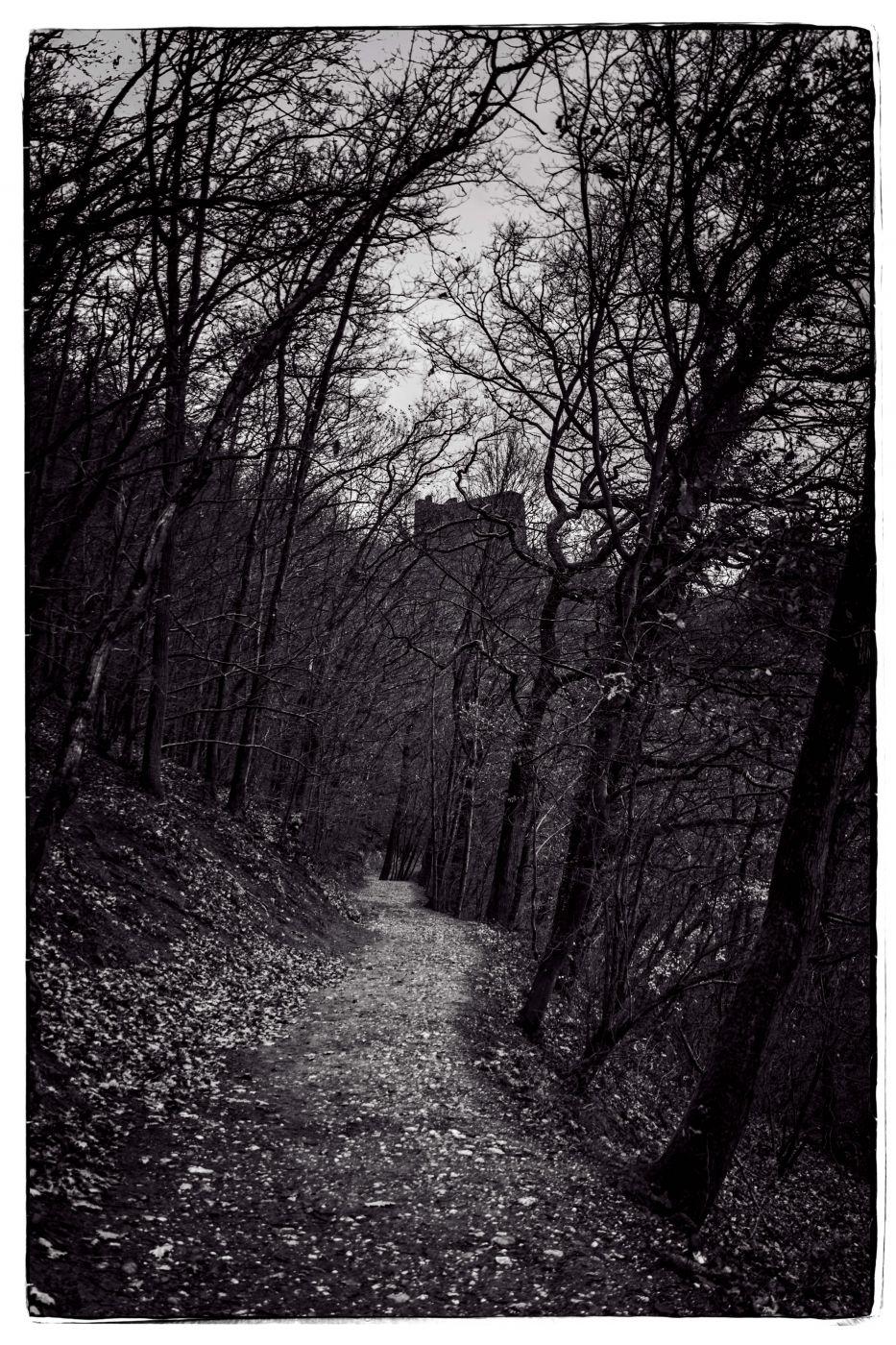 Trutz Eltz Ruin, Germany
