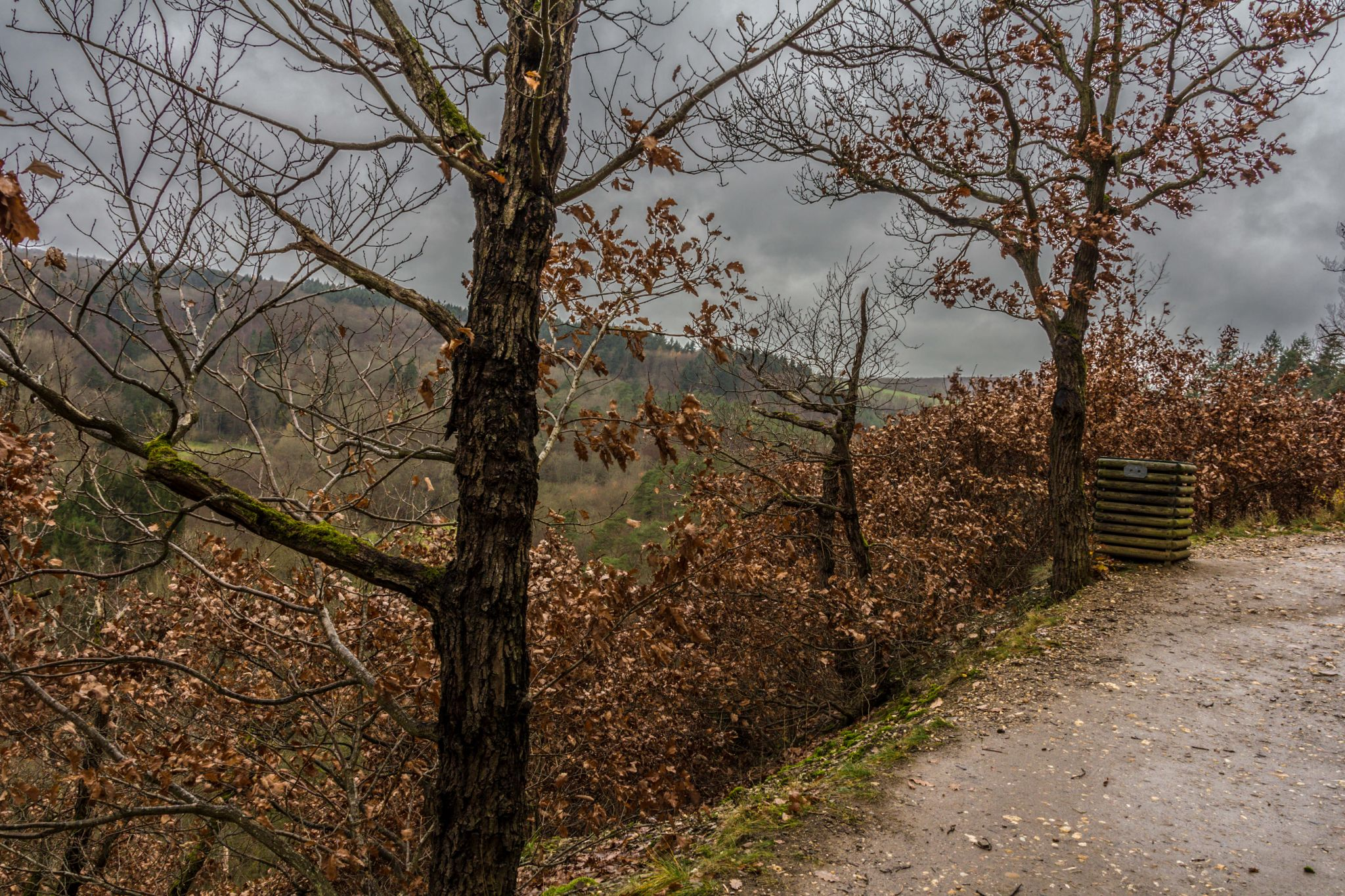 View over Wierschemer Bach valley, Germany