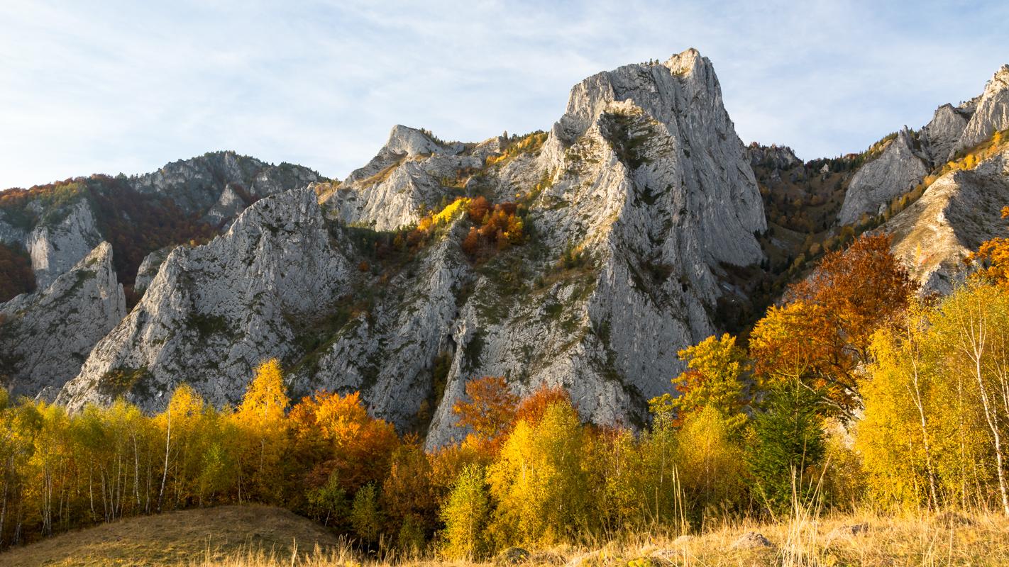 Șesul Craiului / Scărița Belioara, Romania