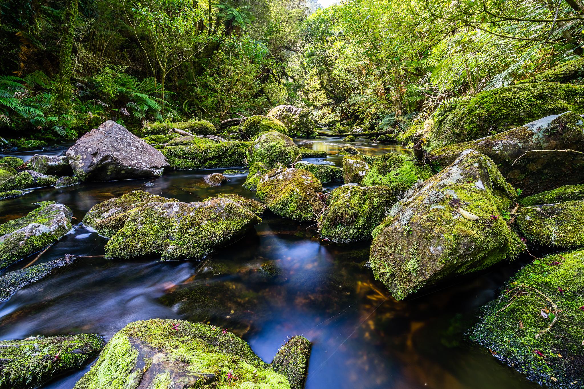 Tautuku River, New Zealand