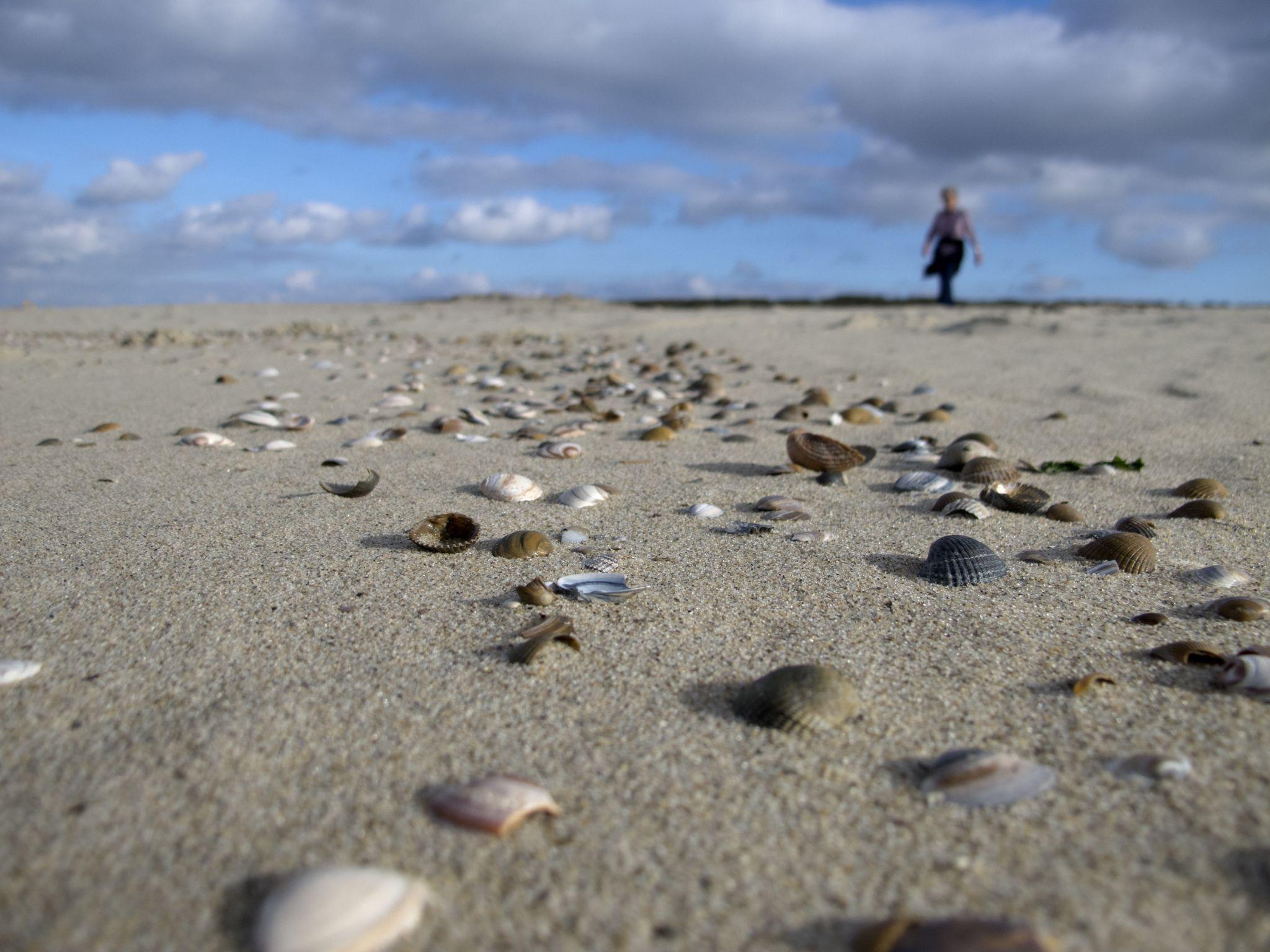 Cadzand beach, Netherlands