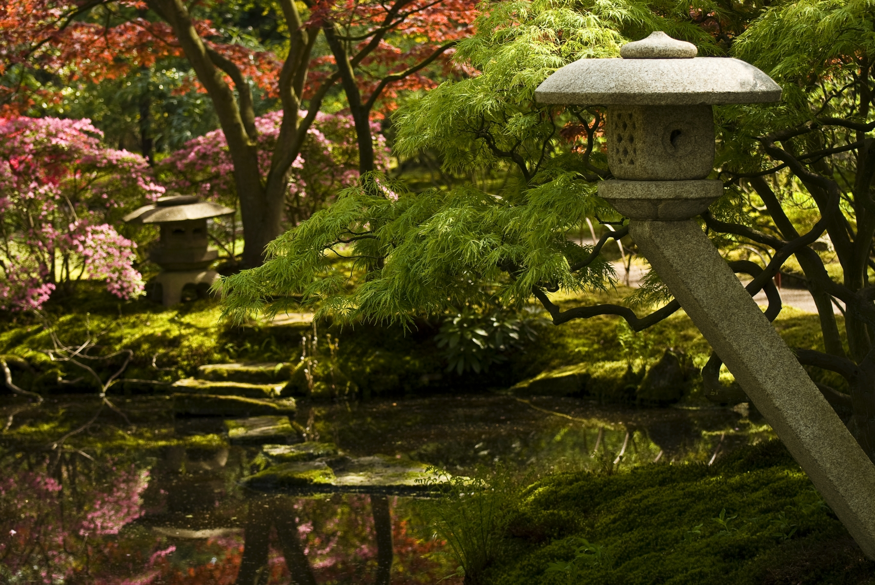 Japanese Garden in Park Clingendael, The Hague, Netherlands