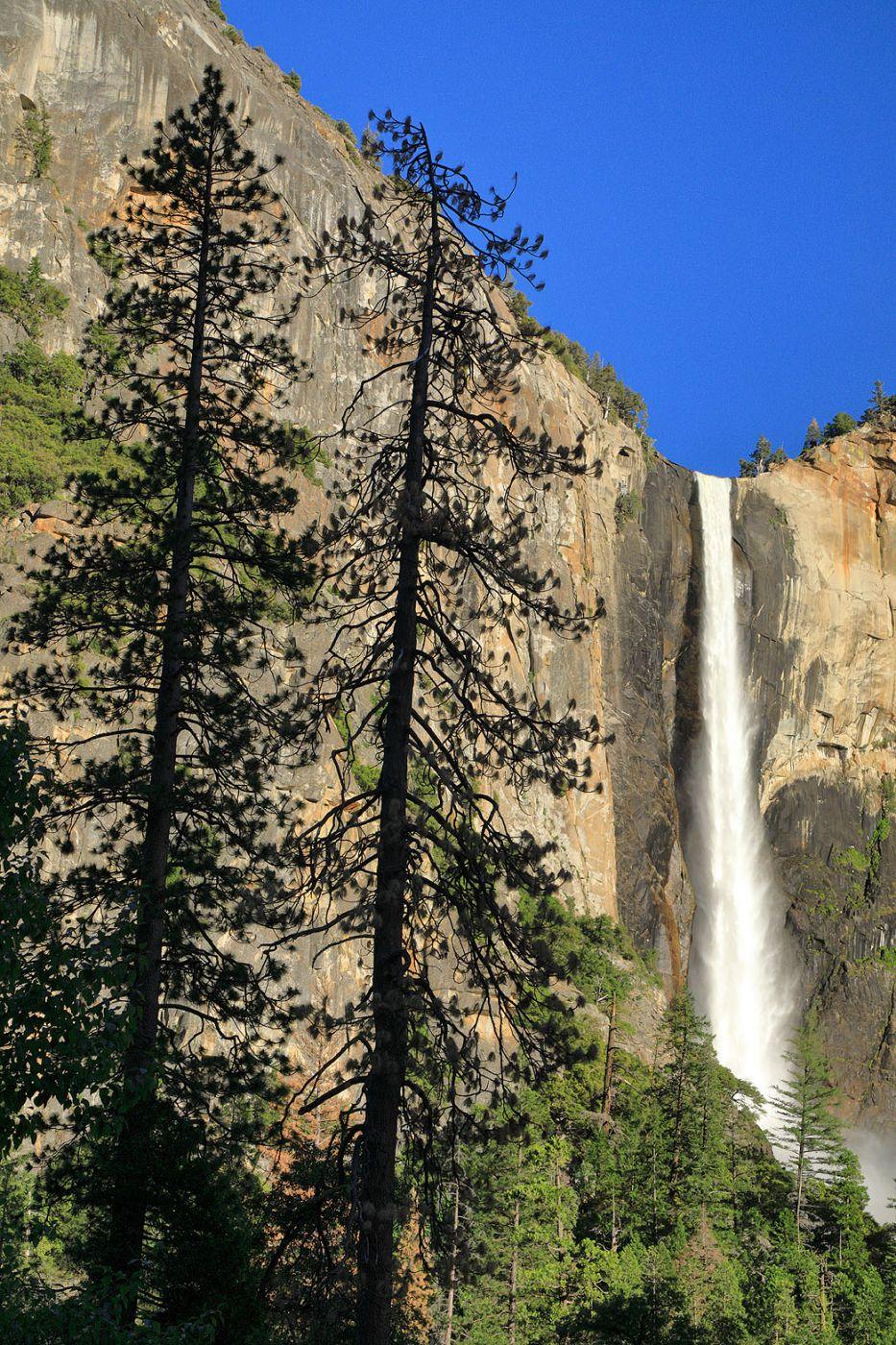 Vertical Splendor, Yosemite National Park, USA