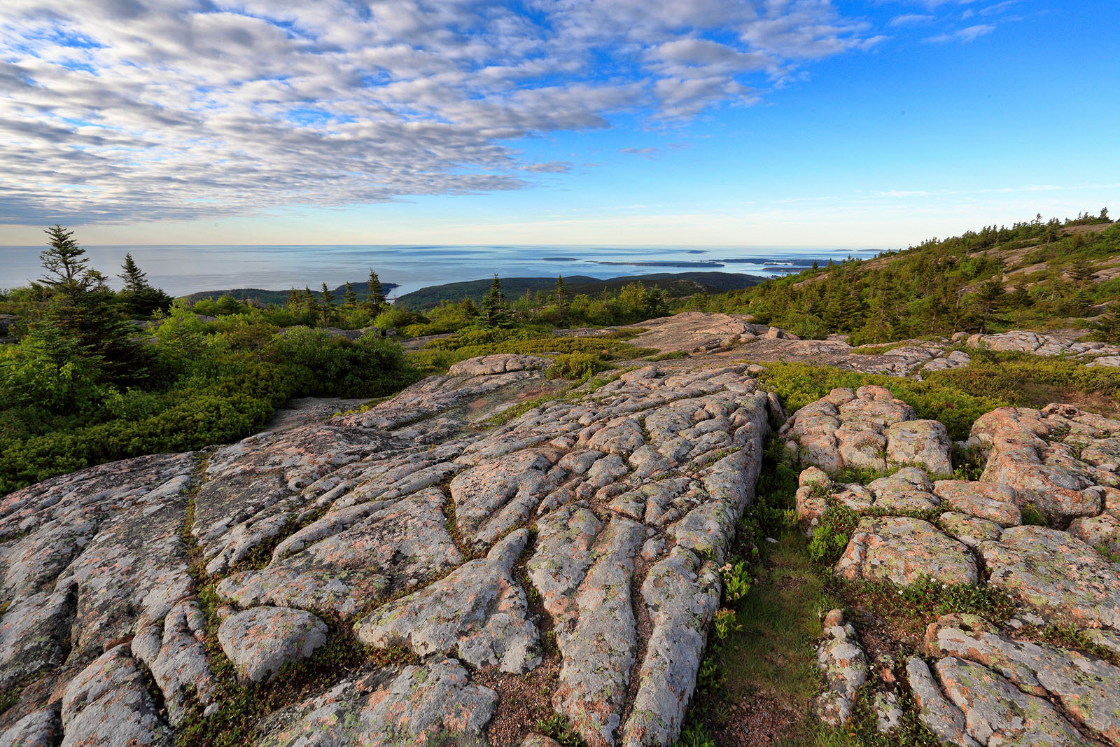 View From Cadillac Mountain, Acadia National Park, Maine, USA