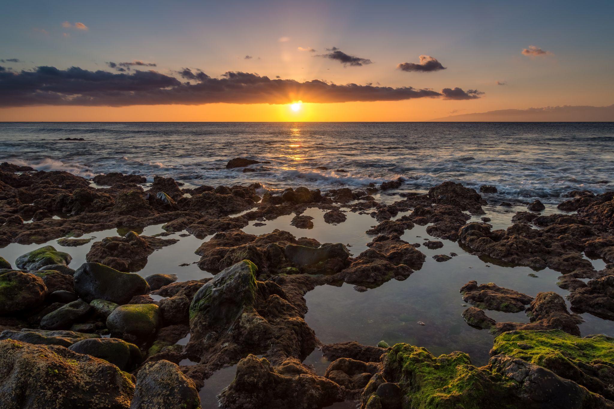 Bahia Beach Palm Mar Seascape, Spain