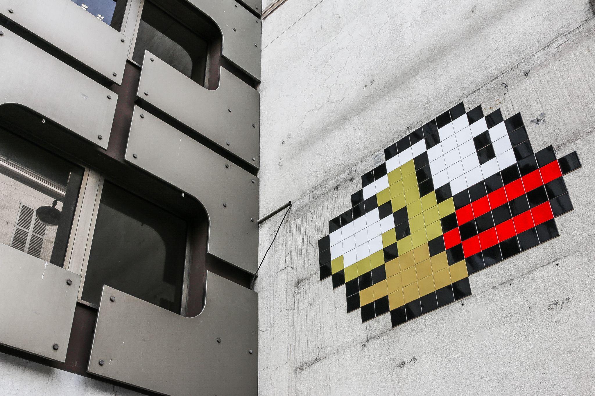 bird on the wall, France