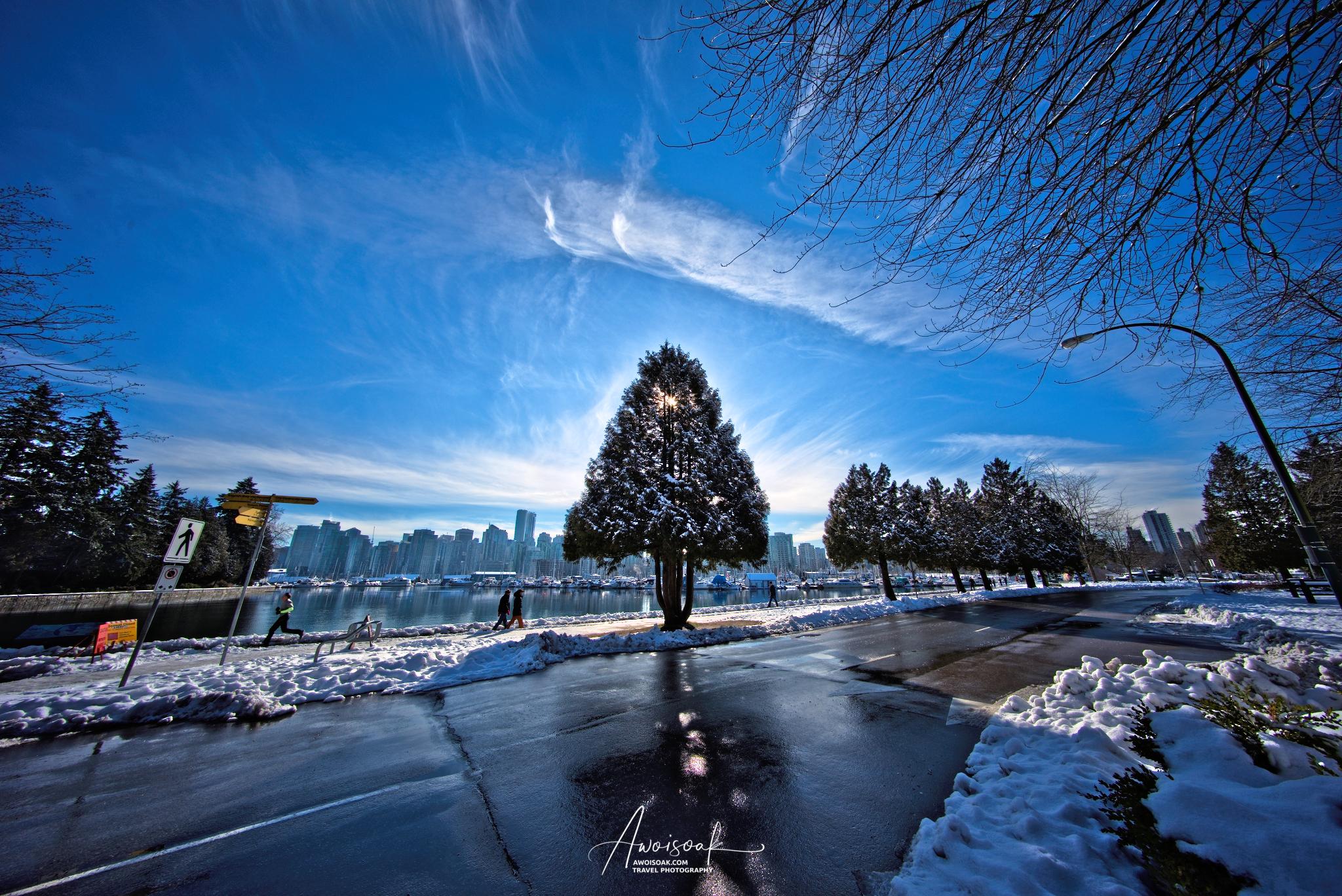Stanley Park, Canada