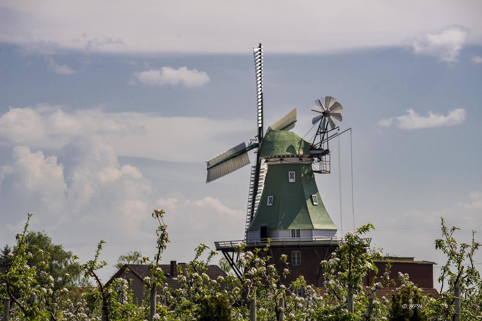 Windmill 'Venti Amica', Hollern-Twielenfleth, Germany