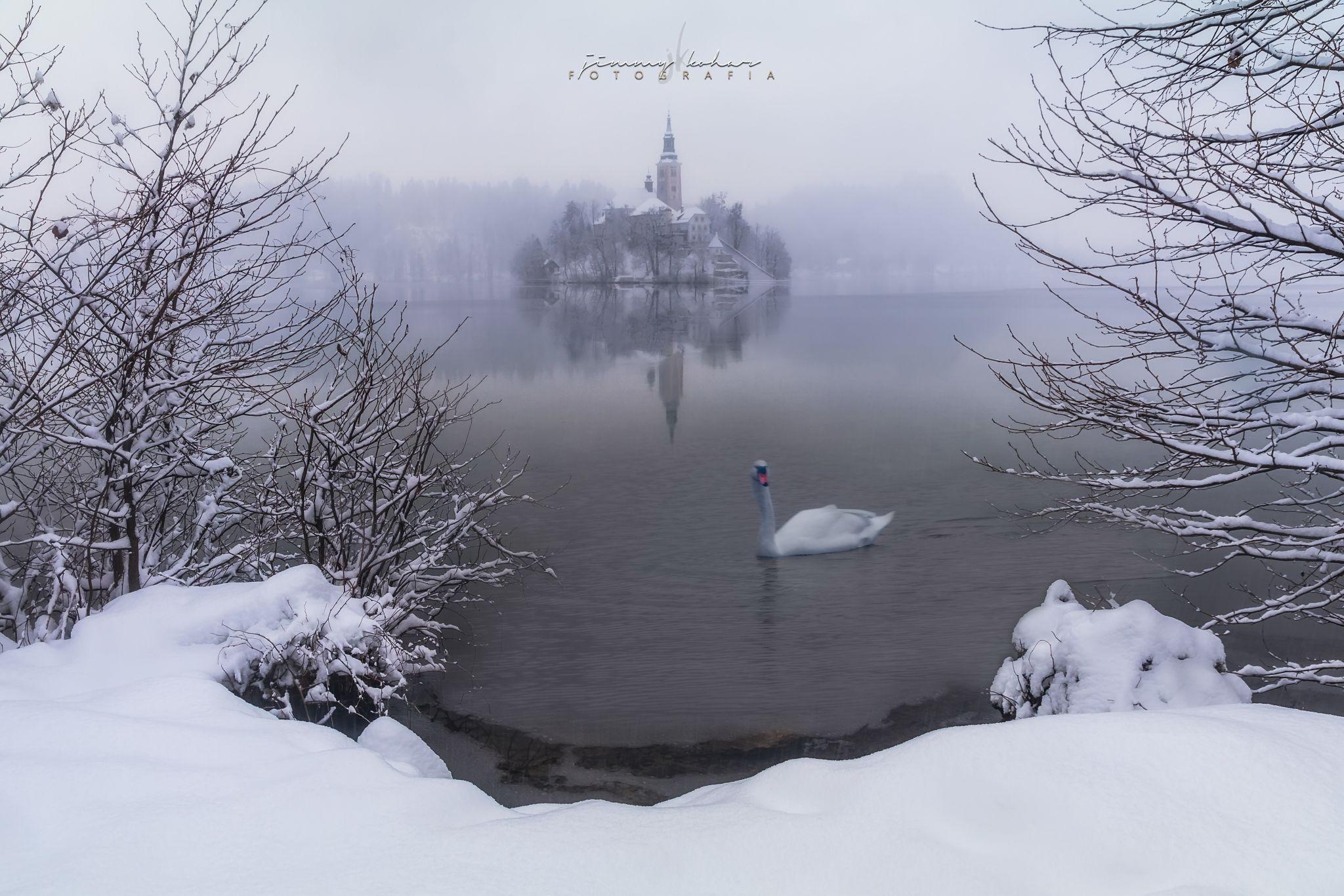 Bled, Winter Wonderland, Slovenia