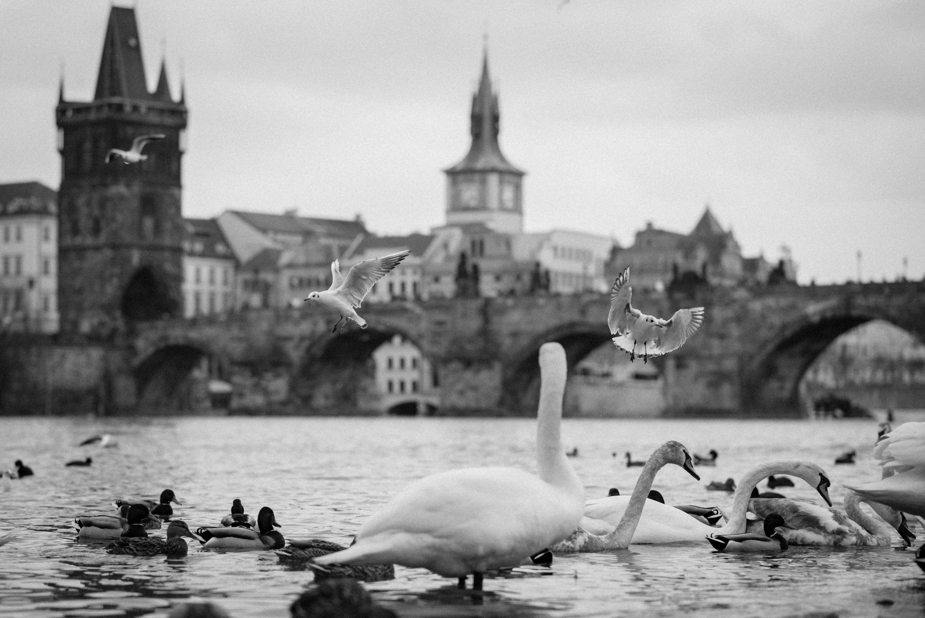 Charles Bridge: The other side, Czech Republic