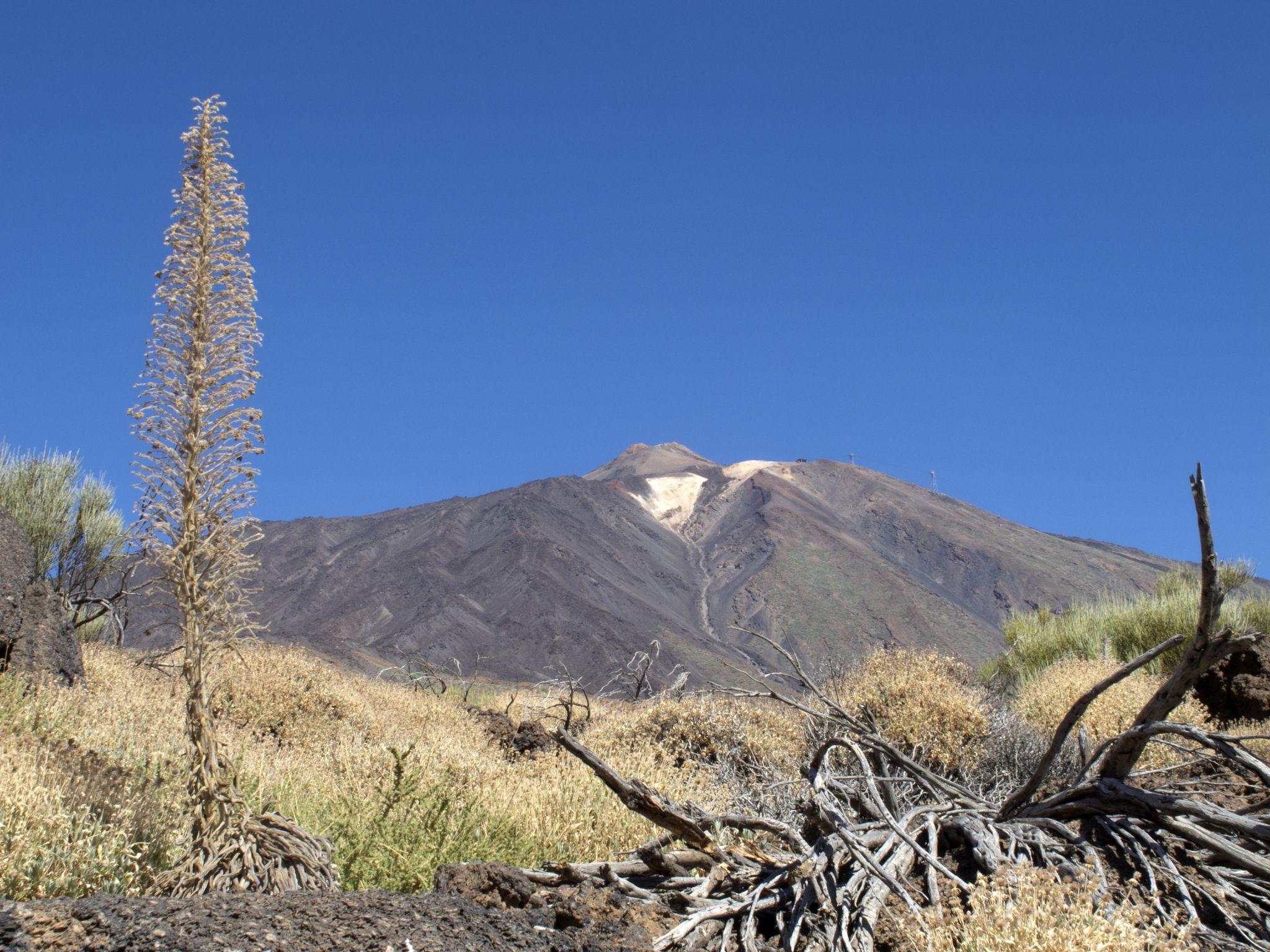 Mirador Llano de Ucanca (Teide view), Spain