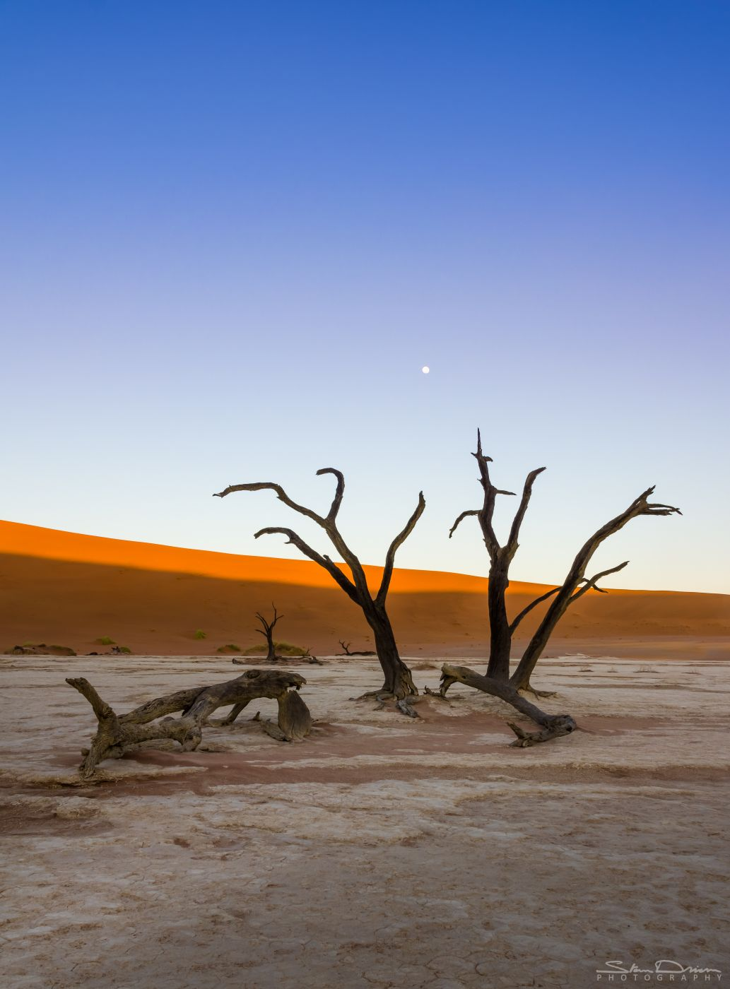 Moon over Dead Vlei, Namibia