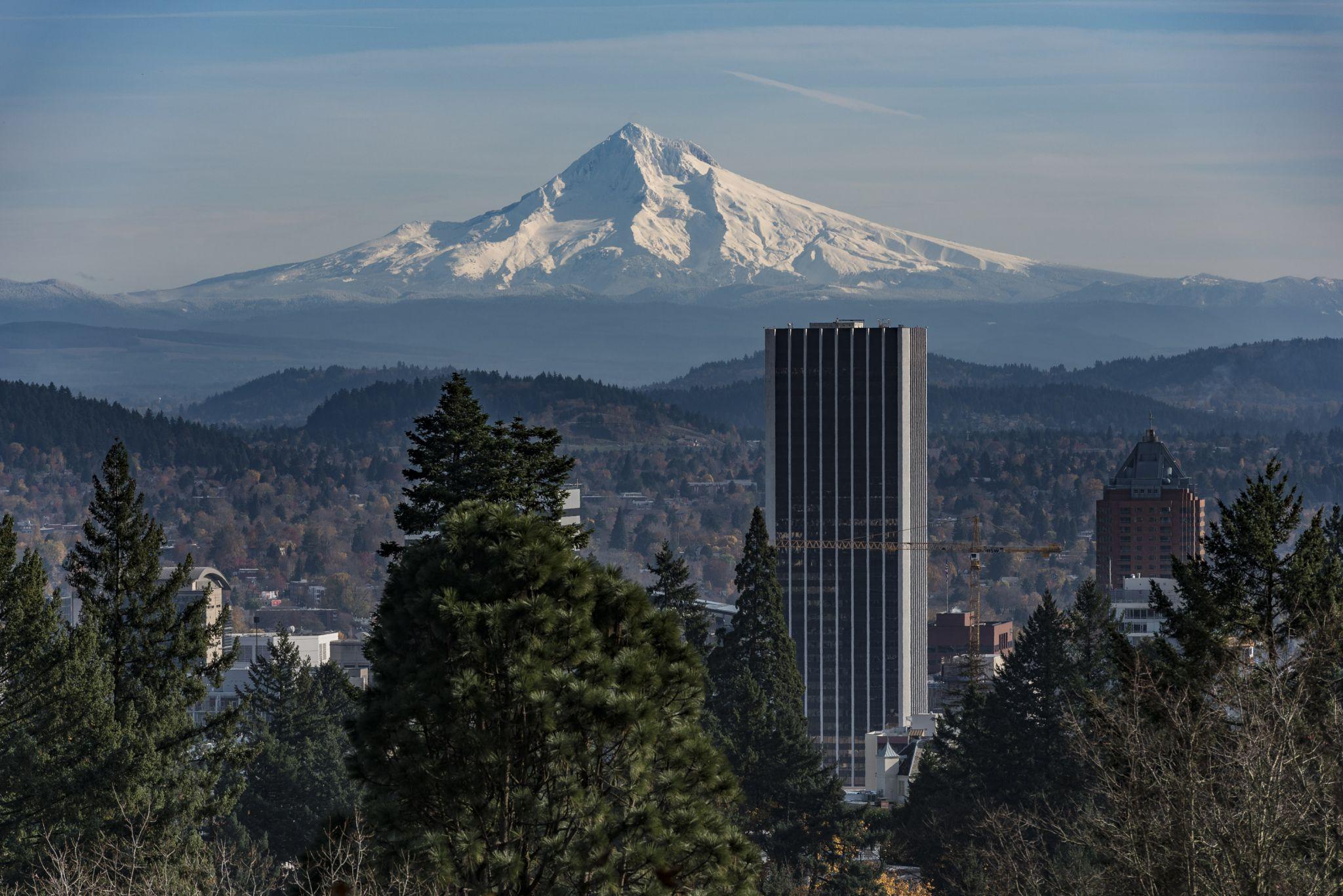 Portland from japanese Garden, USA
