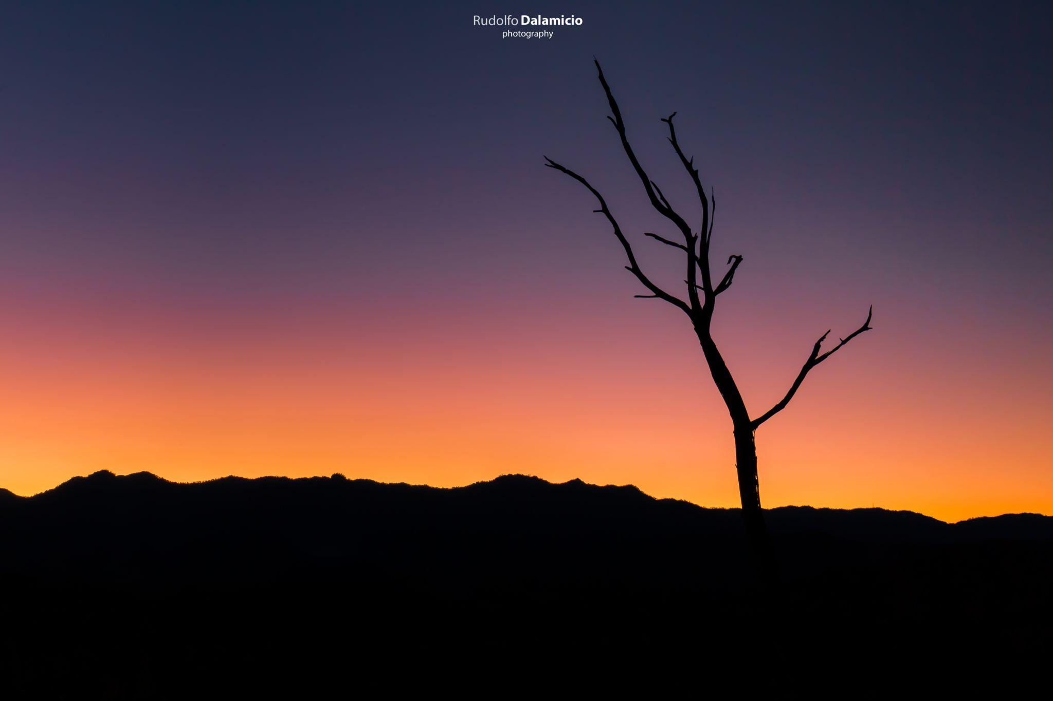 Dead Silhouette, Thailand