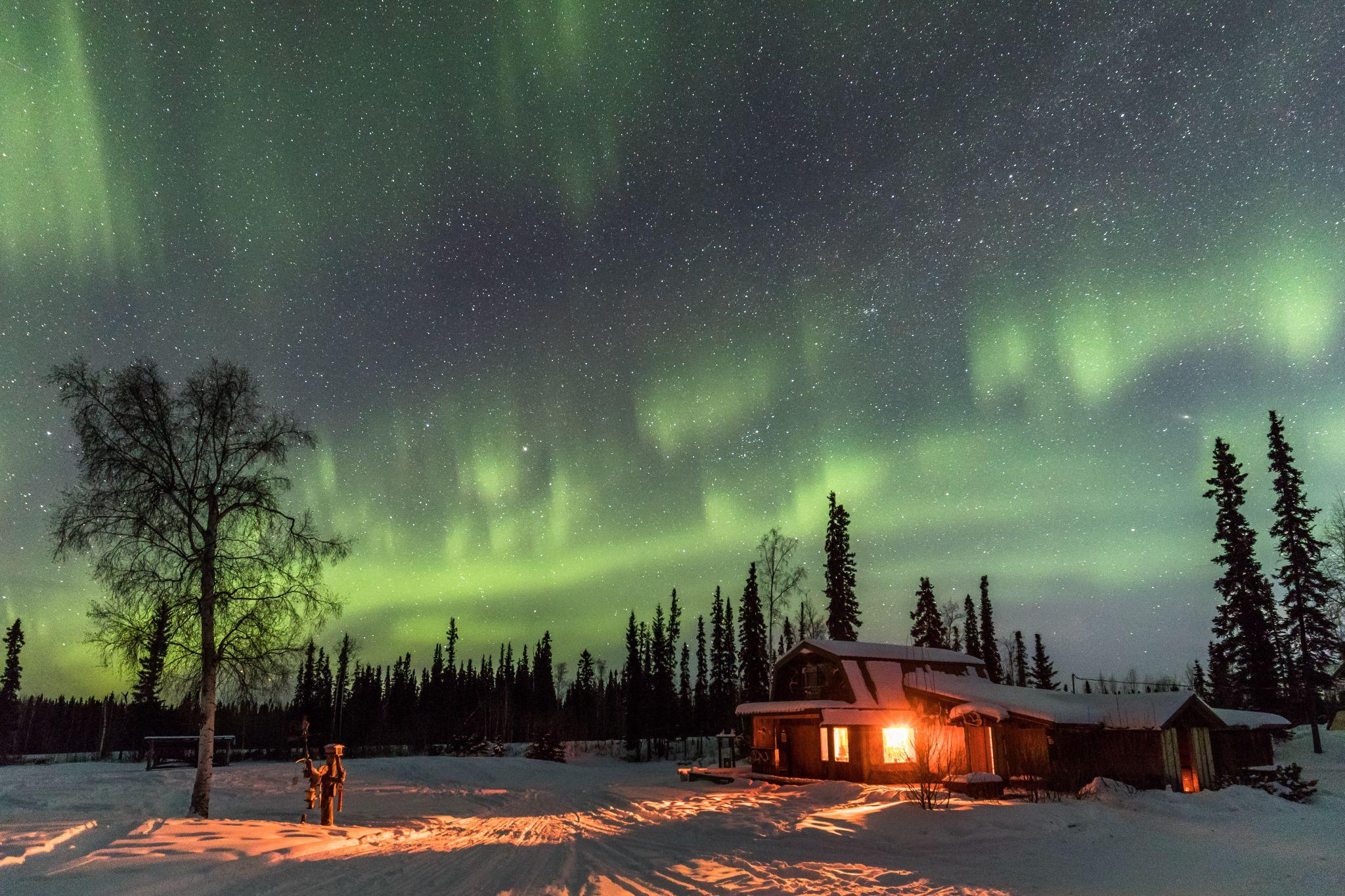Goldstream Husky Lodge, Nenana, Alaska, USA