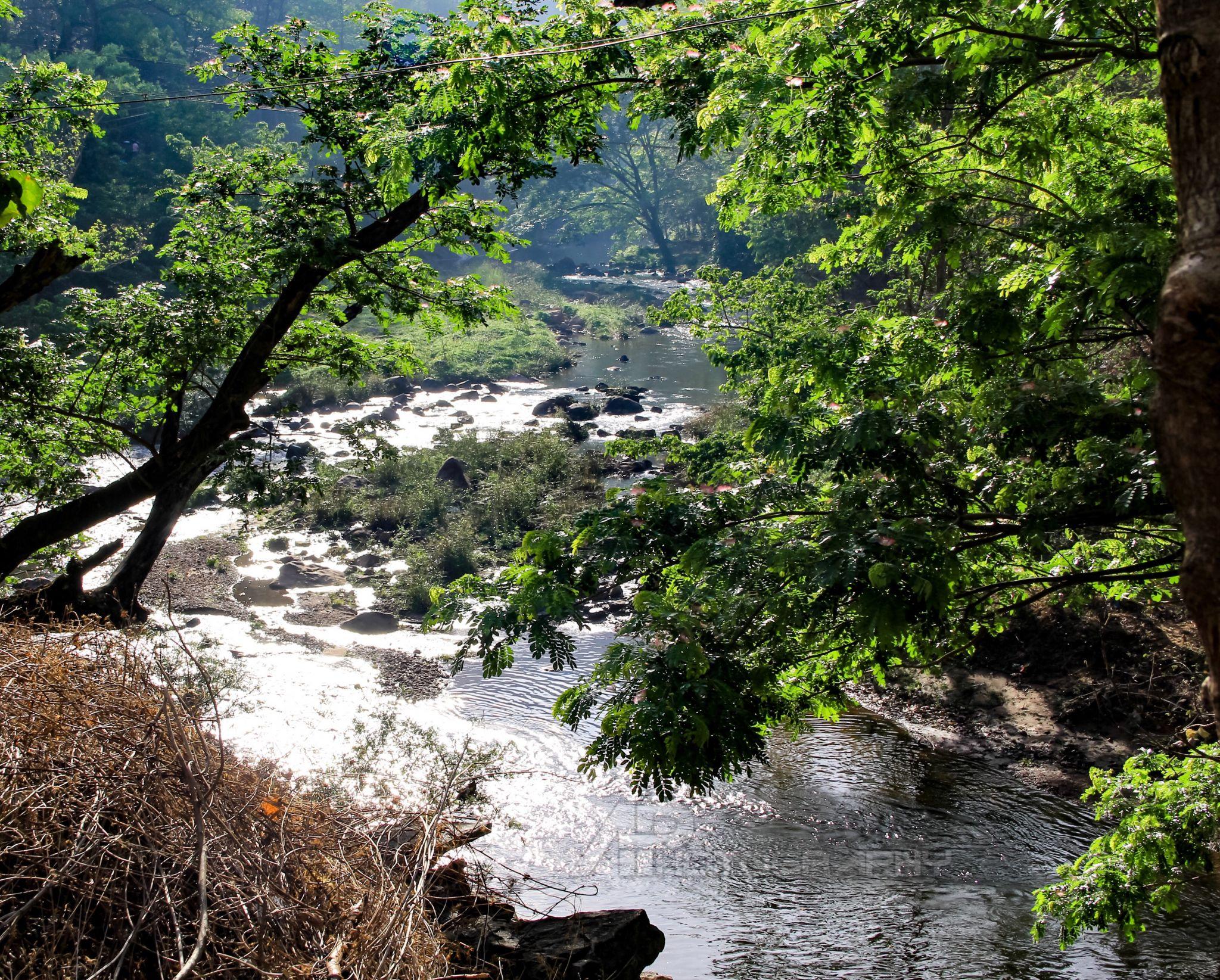 Kallada - Achankovil River, India