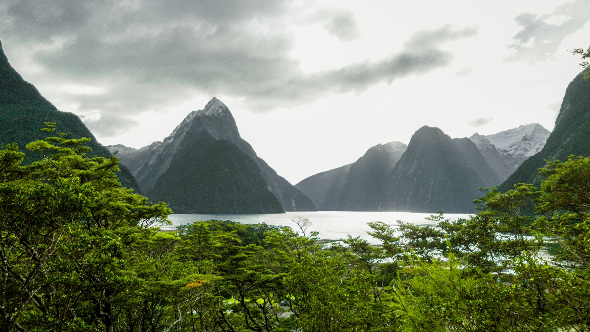 Milford Sound Lookoutpoint, New Zealand