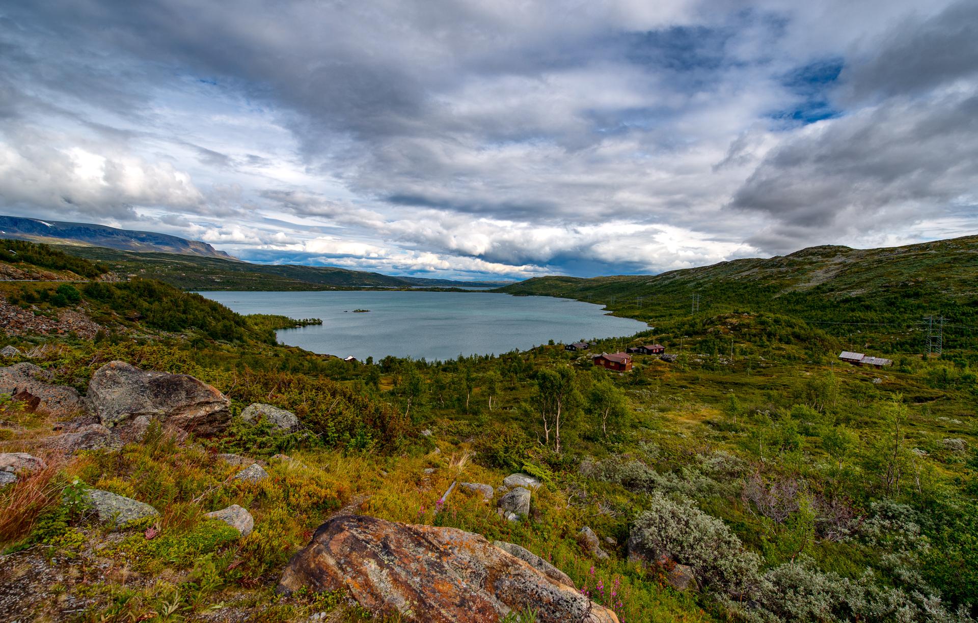 Norway Hardangervidda, Norway