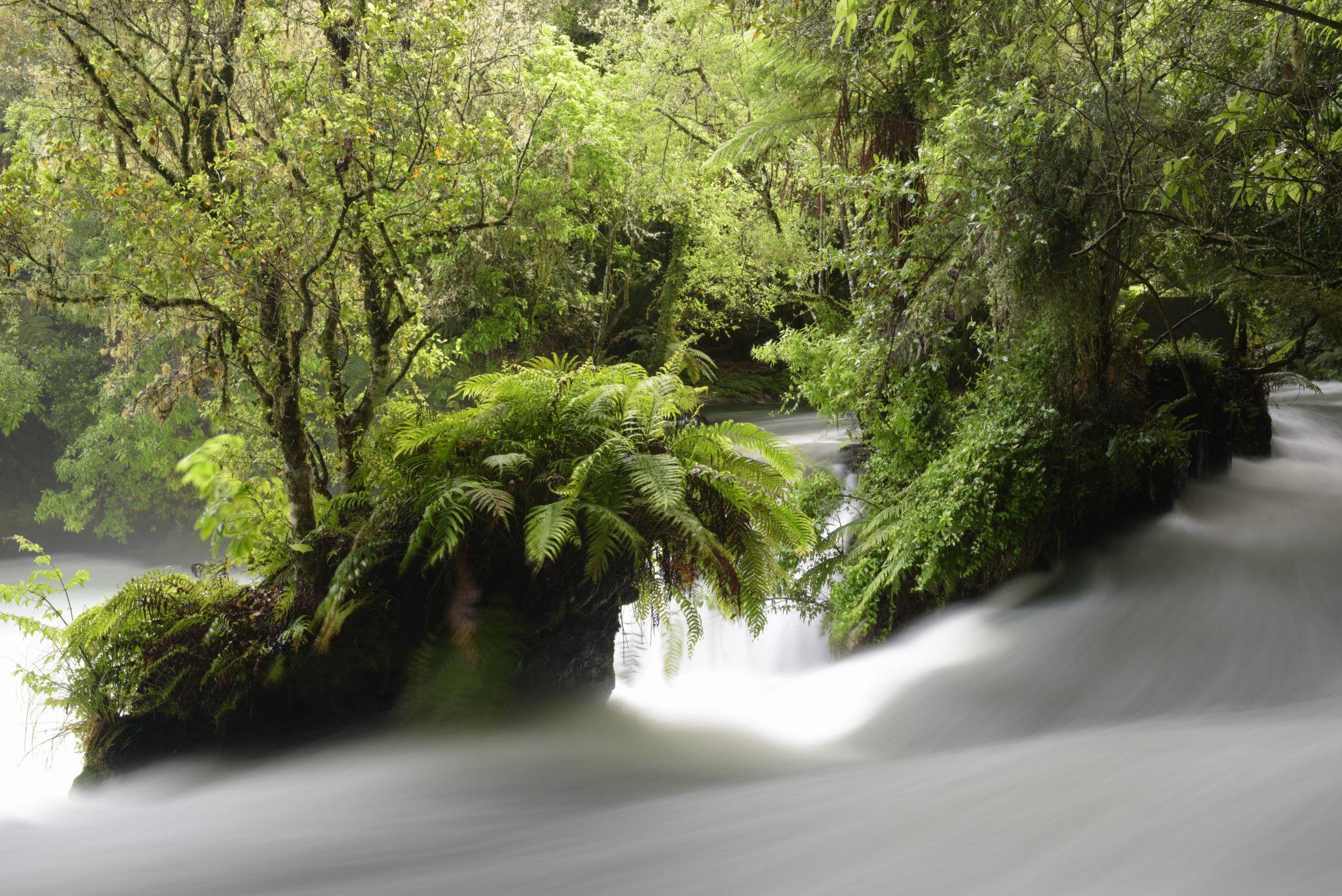 Okere Falls, New Zealand