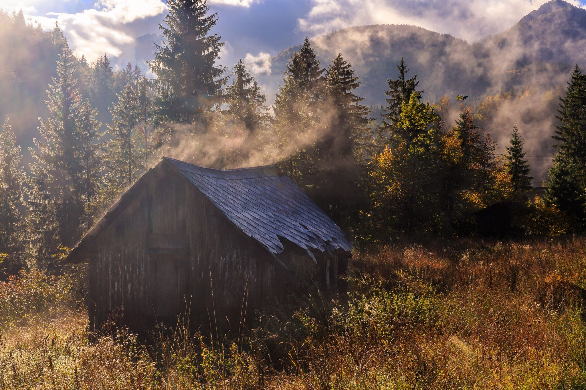 Steaming depilated hut, Italy