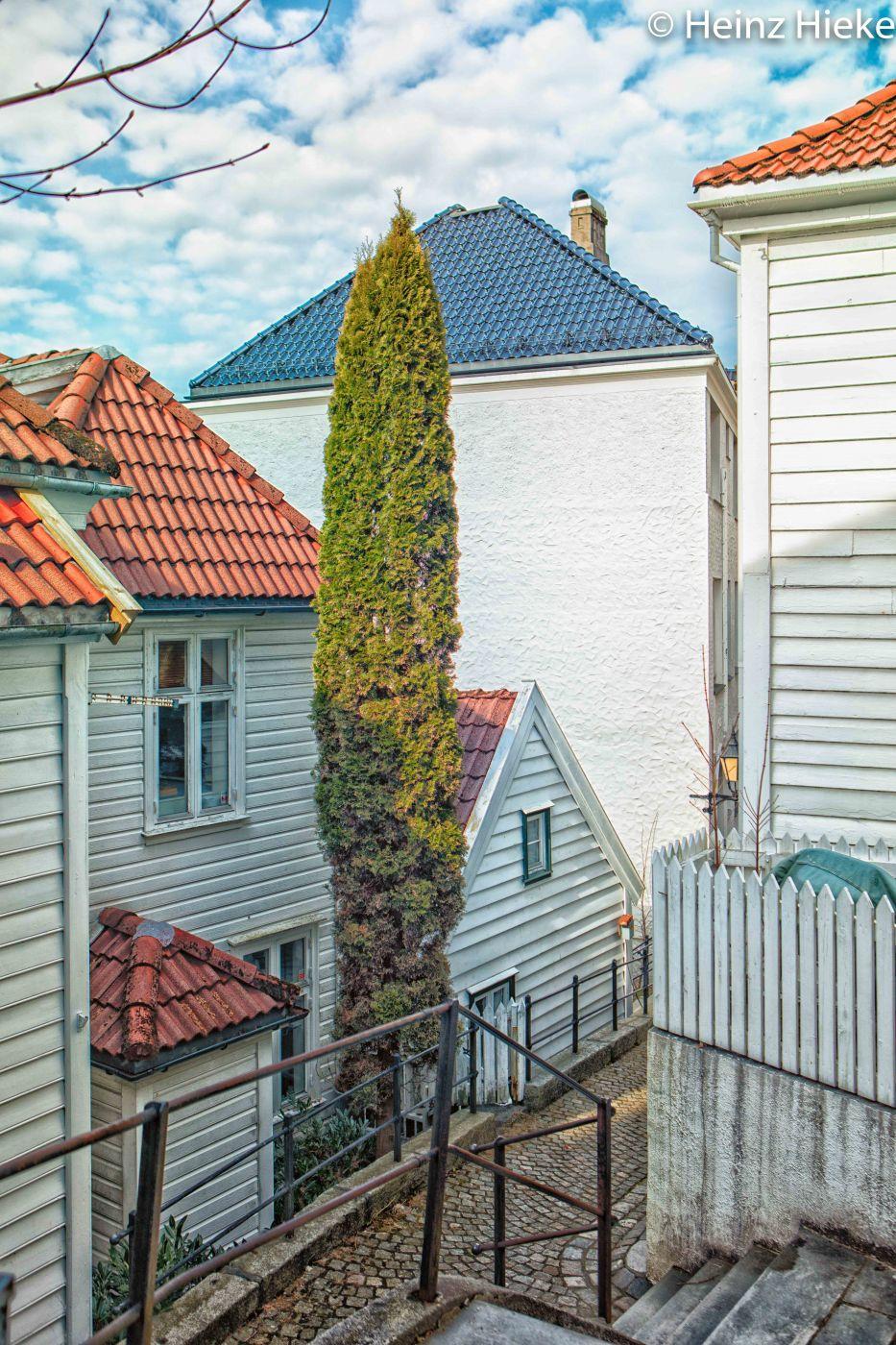 tre Haeusser, Norway