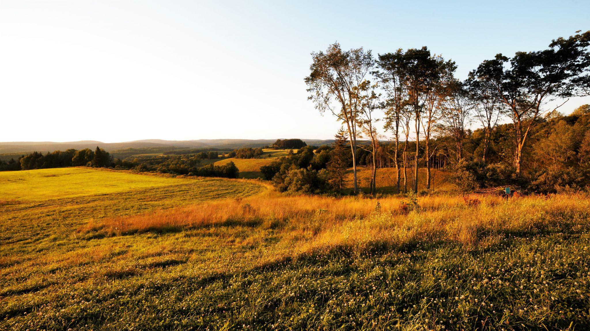 Vistas of Central Pennsylvania, USA