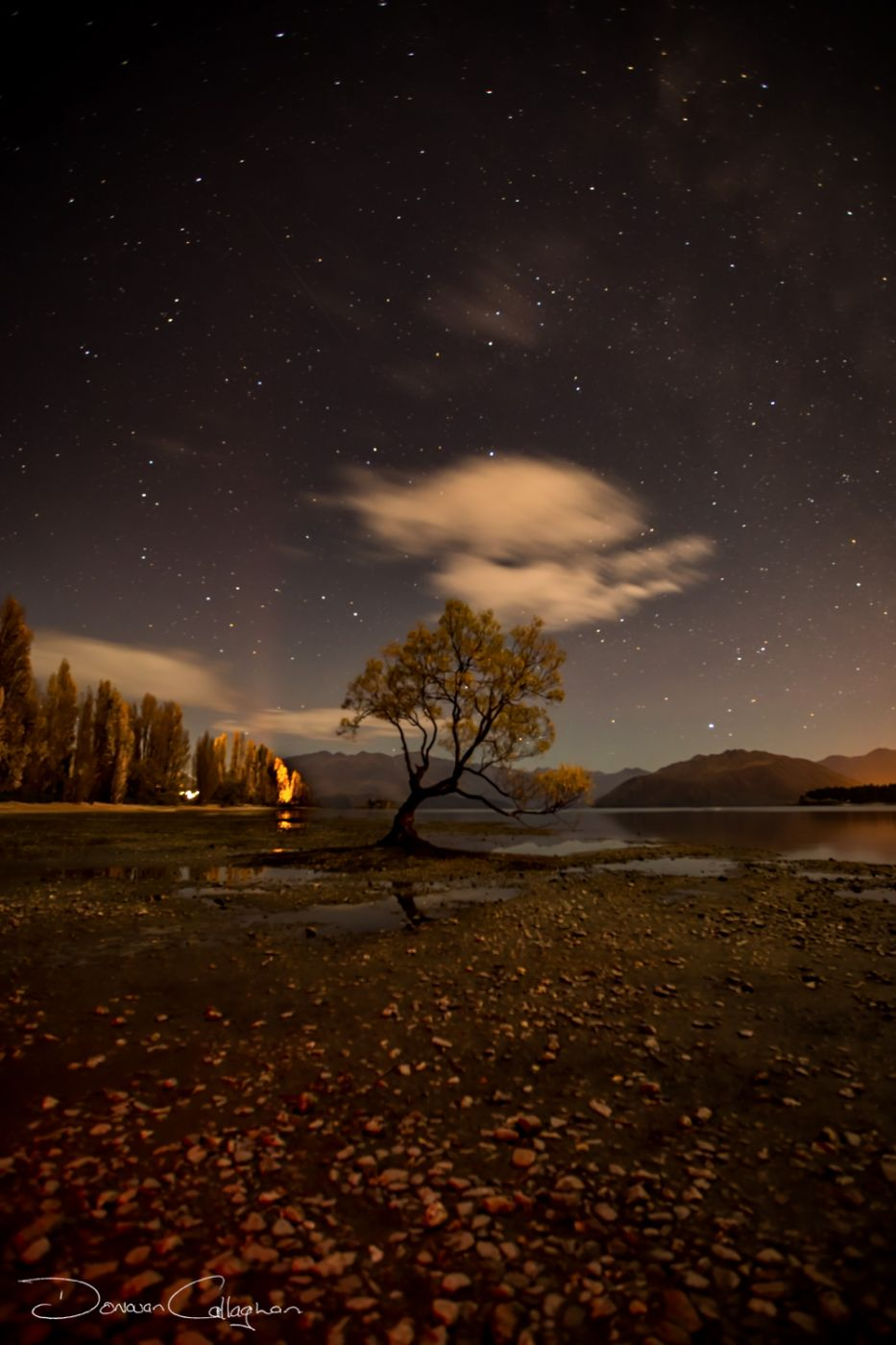 Wanaka one tree sunrise, New Zealand