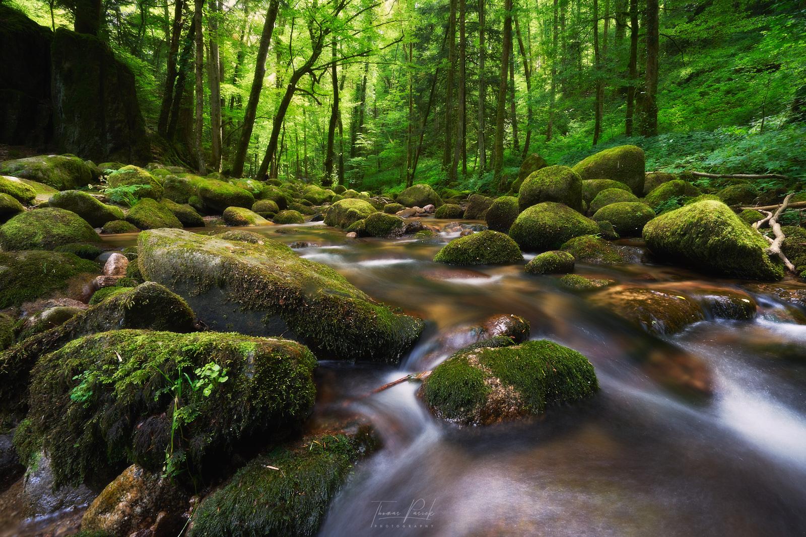 Der Grobbach (Geroldsauer Wasserfälle), Germany