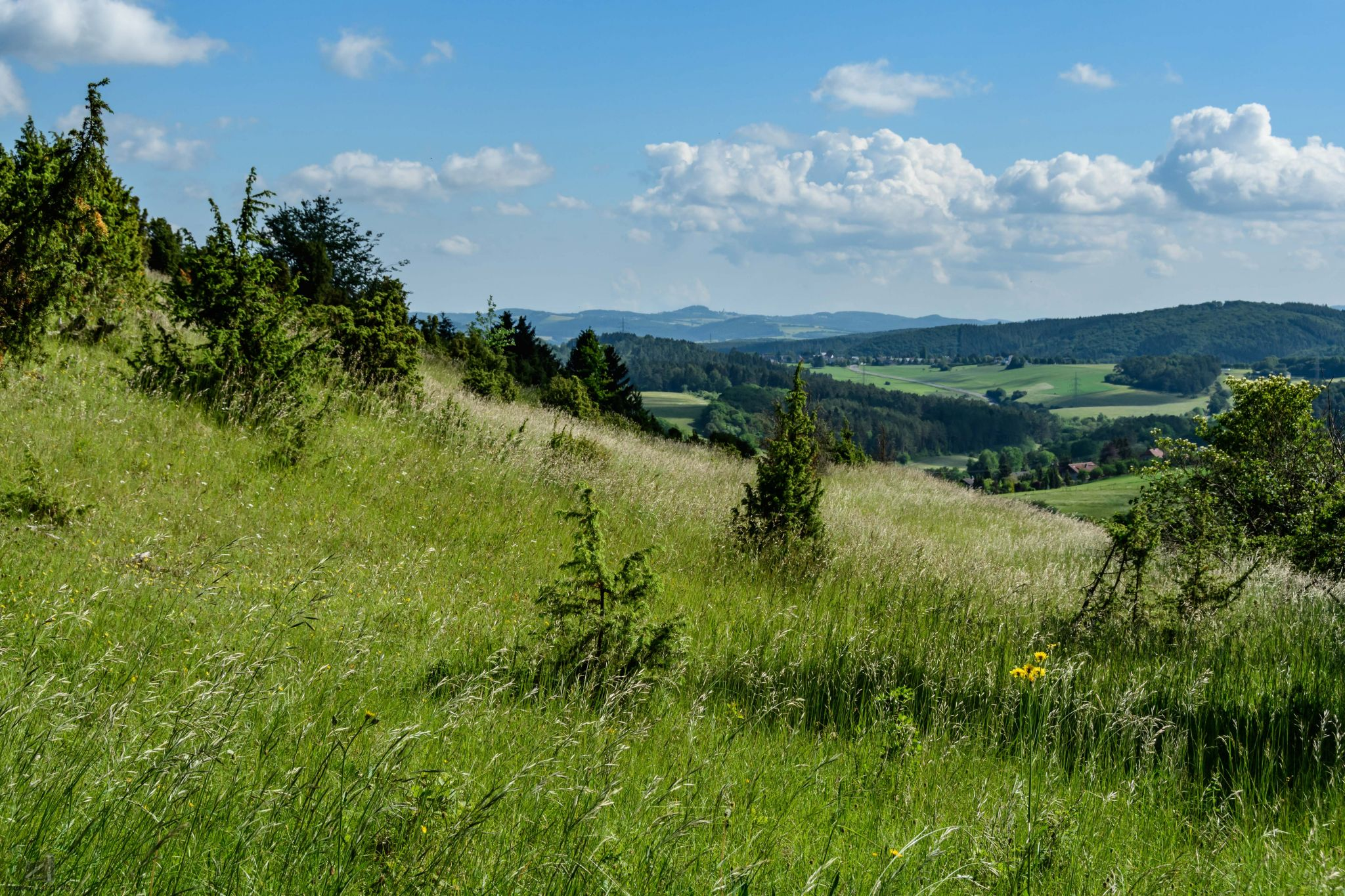 Hoenselberg, Germany